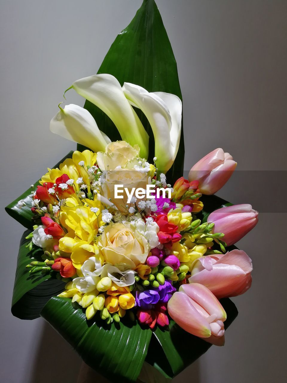 flower, flowering plant, plant, freshness, close-up, vulnerability, indoors, bouquet, beauty in nature, multi colored, fragility, flower arrangement, nature, food and drink, food, flower head, inflorescence, studio shot, petal, choice