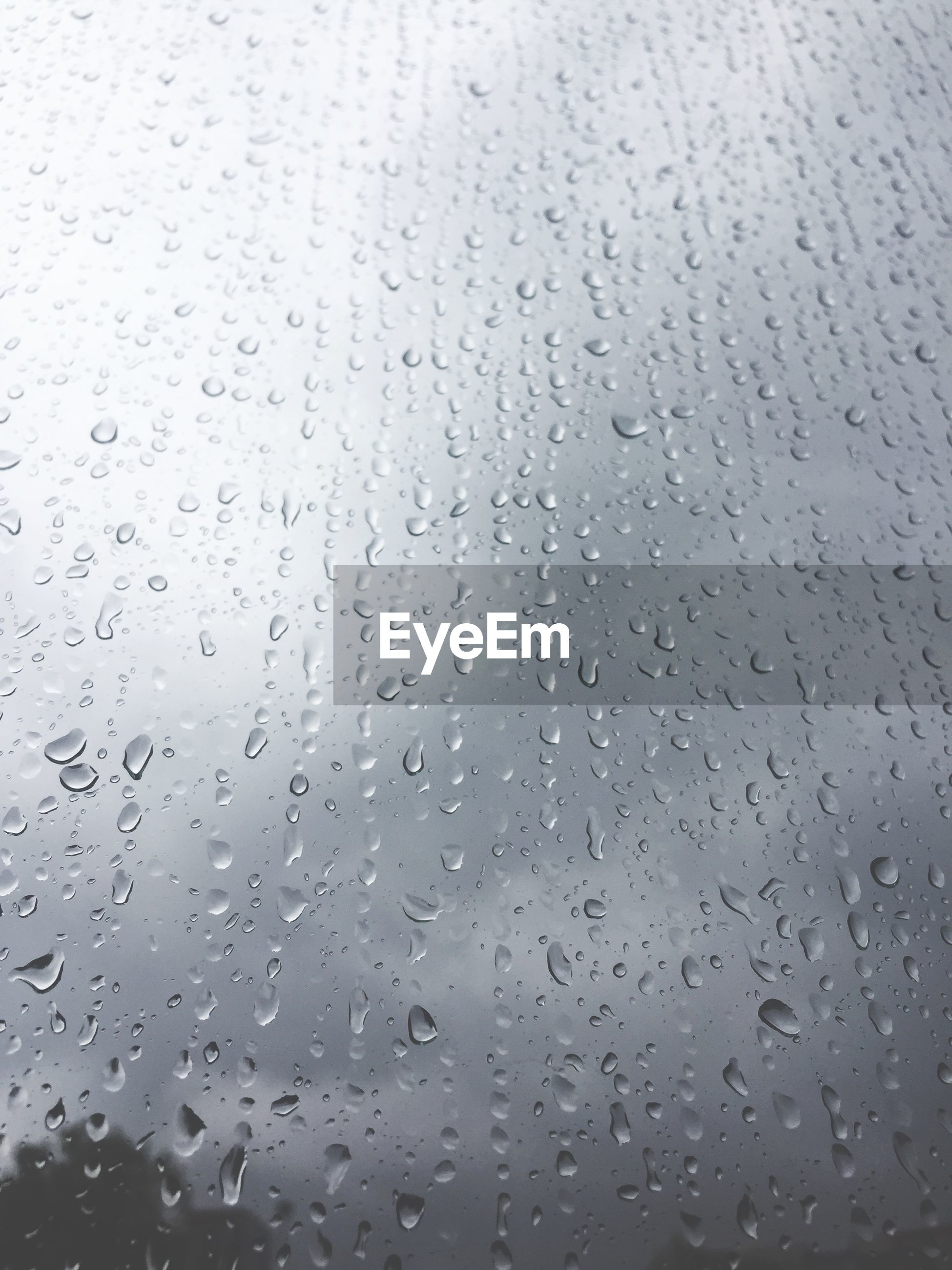 drop, water, rain, wet, window, full frame, glass - material, backgrounds, transparent, raindrop, no people, close-up, nature, indoors, day, rainy season, pattern, dew, purity