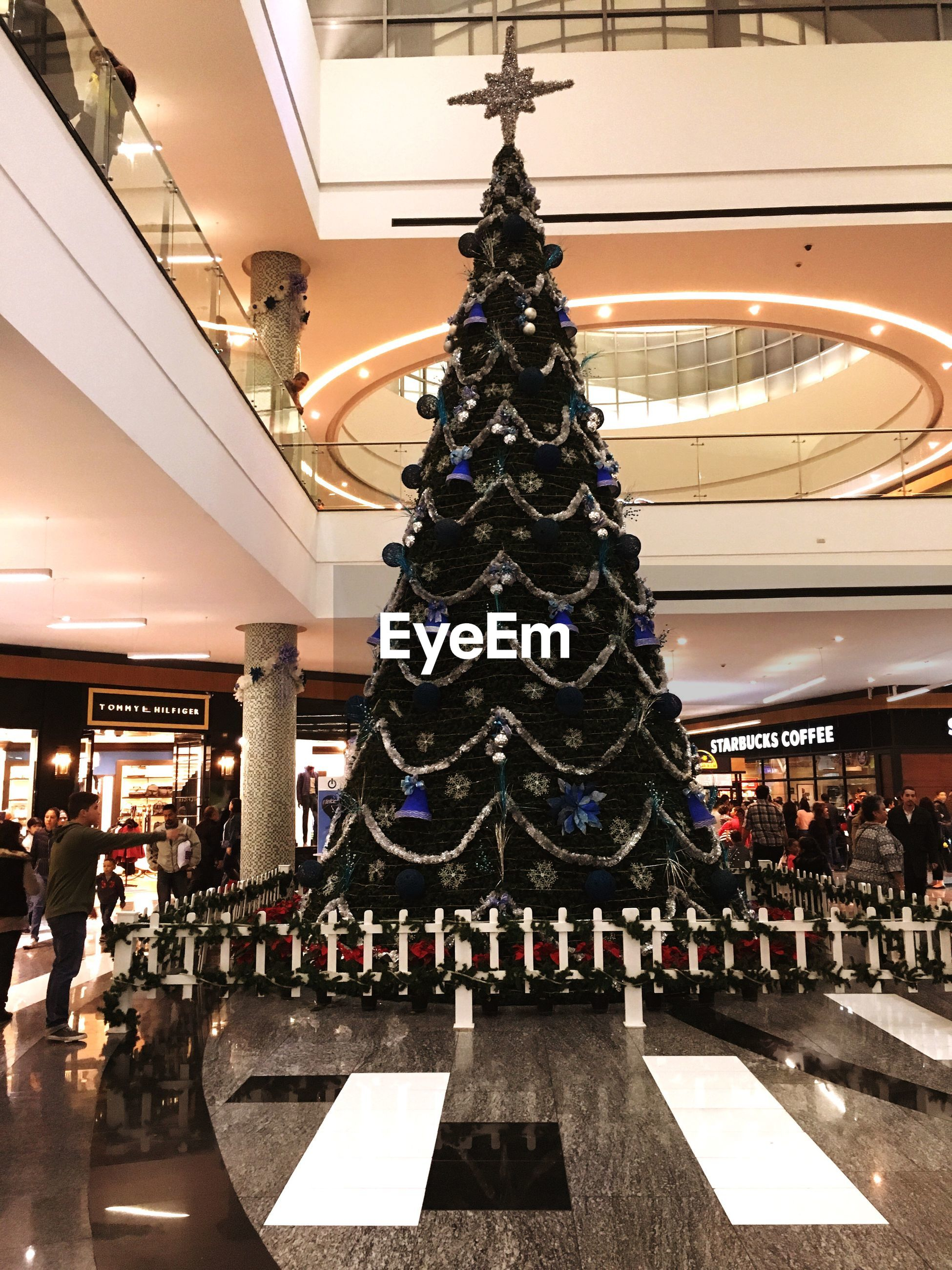 christmas, christmas tree, christmas decoration, christmas lights, celebration, christmas ornament, built structure, tree, illuminated, no people, architecture, indoors, tree topper, night