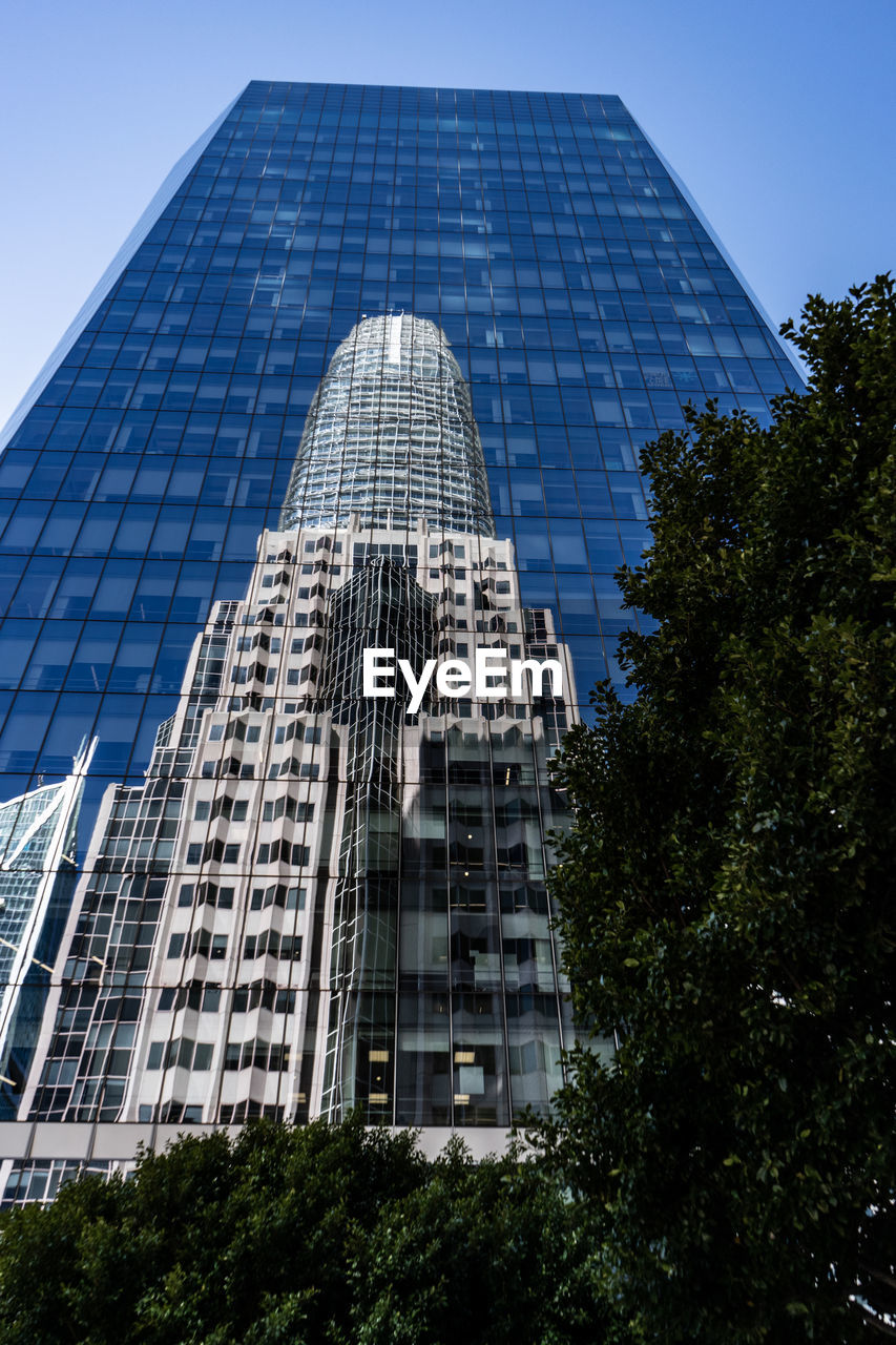 building exterior, built structure, architecture, tree, plant, city, building, low angle view, modern, office building exterior, office, no people, sky, tall - high, day, nature, glass - material, skyscraper, outdoors, tower, financial district