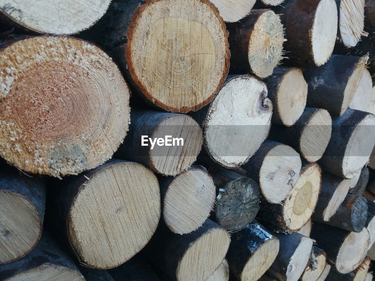 timber, firewood, woodpile, log, stack, forestry industry, wood, heap, backgrounds, repetition, full frame, shape, wood - material, textured, fuel and power generation, abundance, lumber industry, large group of objects, deforestation, close-up, no people, day, outdoors