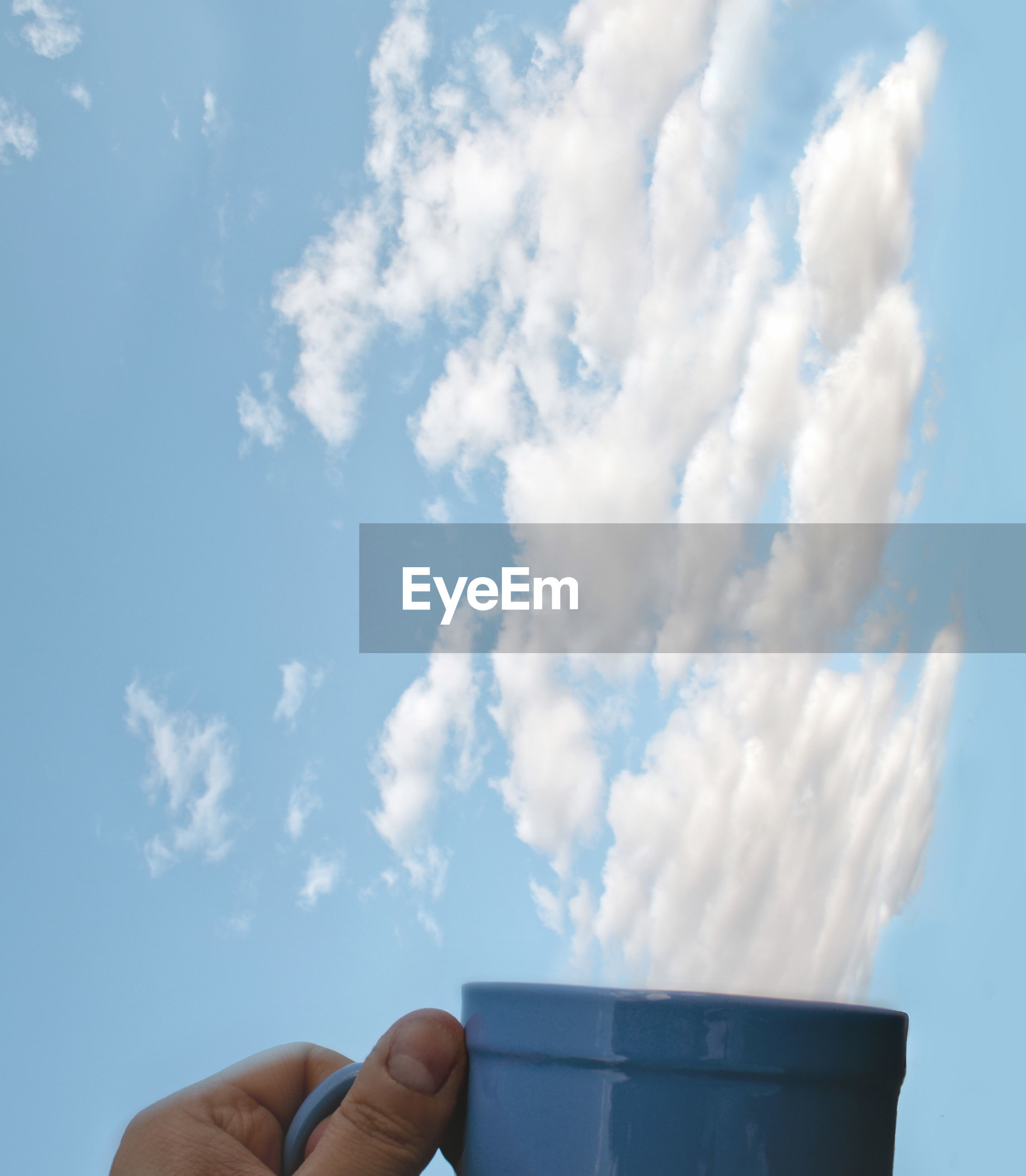 Close-up of person holding cup against sky