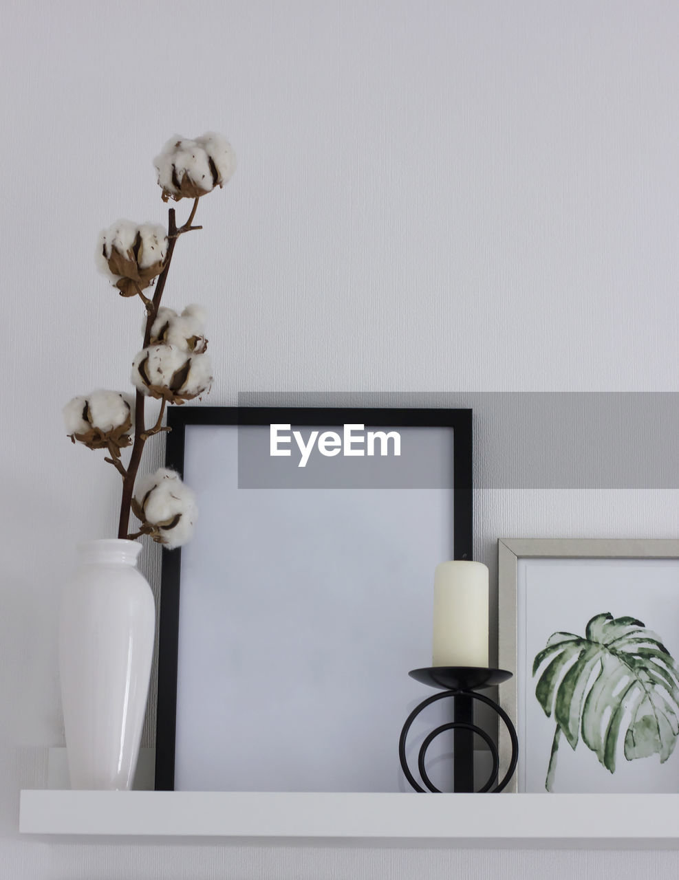 plant, no people, indoors, white color, nature, frame, home interior, flower, wall - building feature, flowering plant, picture frame, table, copy space, potted plant, representation, decoration, beauty in nature, still life, vulnerability, day, houseplant
