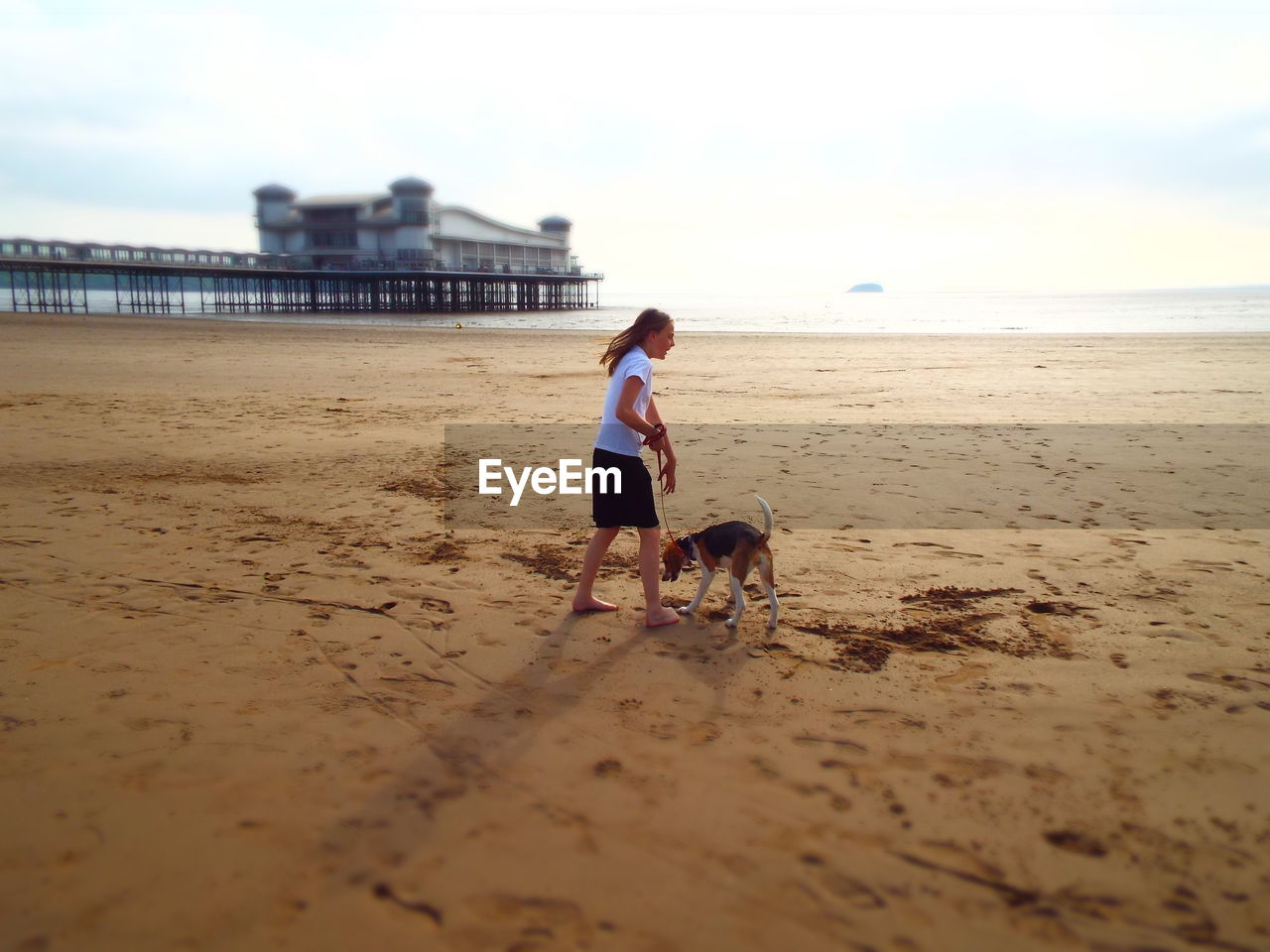 Woman with dog at beach against sky