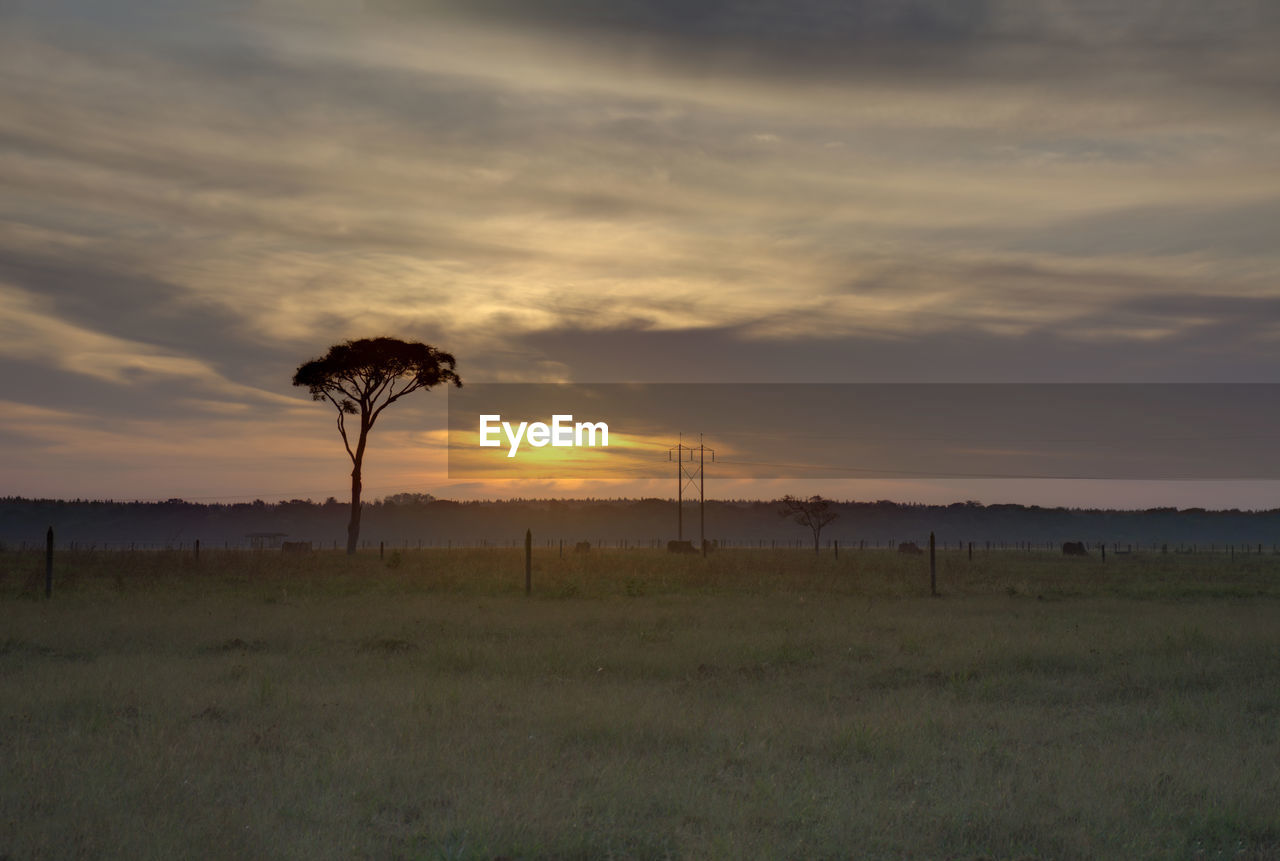 SCENIC VIEW OF LAND DURING SUNSET