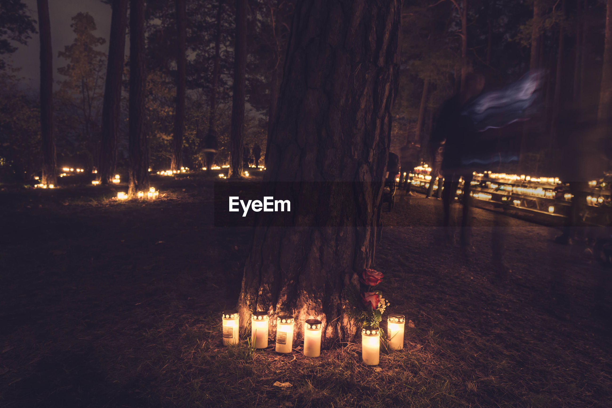 Blurred motion of man walking by lit candles in forest at night