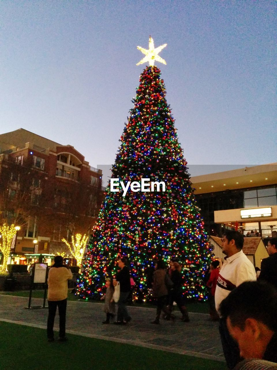 christmas tree, christmas, real people, celebration, large group of people, clear sky, christmas lights, tree topper, illuminated, christmas decoration, tree, men, outdoors, night, building exterior, women, sky, people
