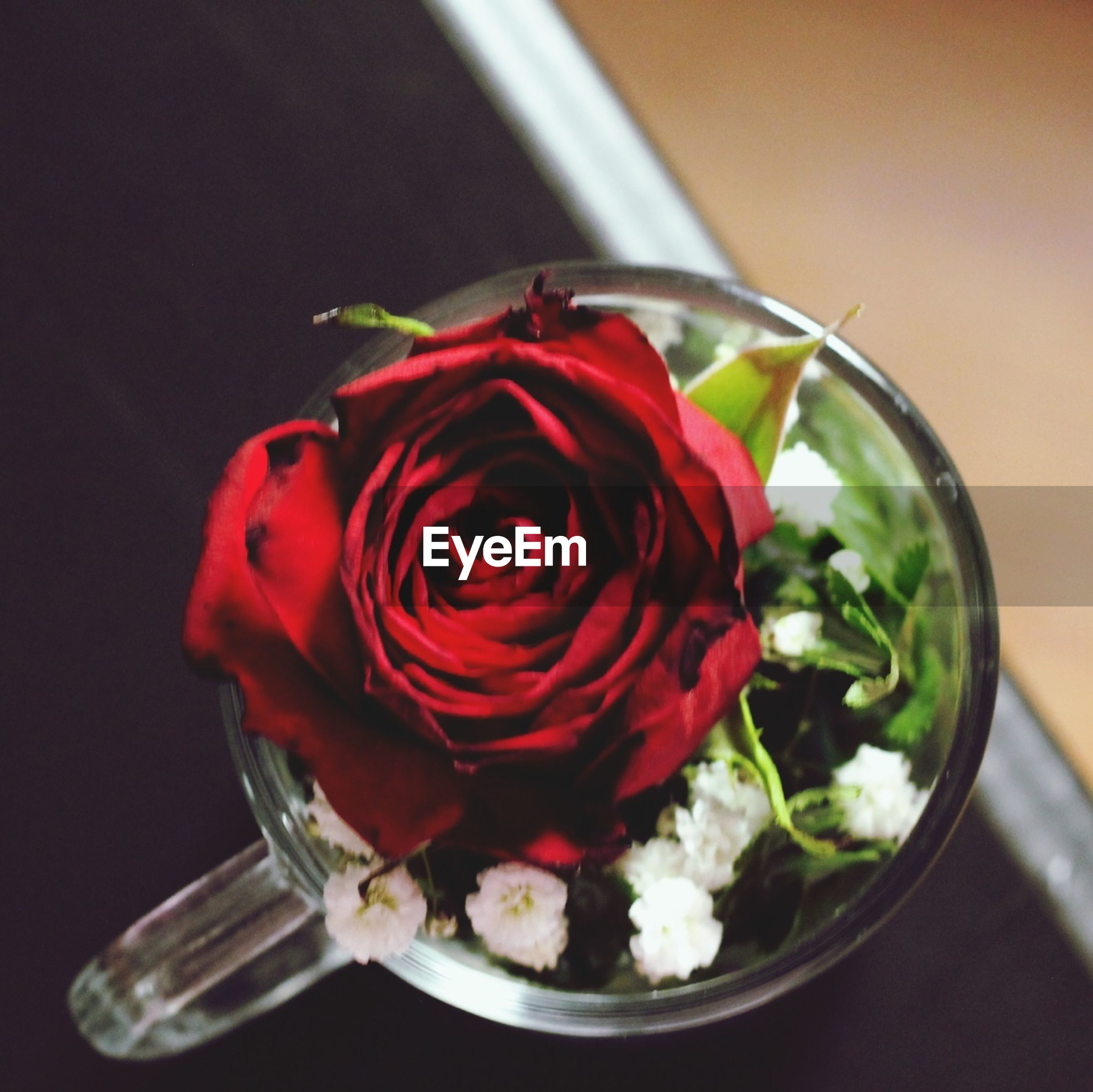 freshness, flower, indoors, table, red, petal, close-up, rose - flower, fragility, still life, vase, flower head, food and drink, pink color, high angle view, decoration, rose, bouquet, no people, bunch of flowers