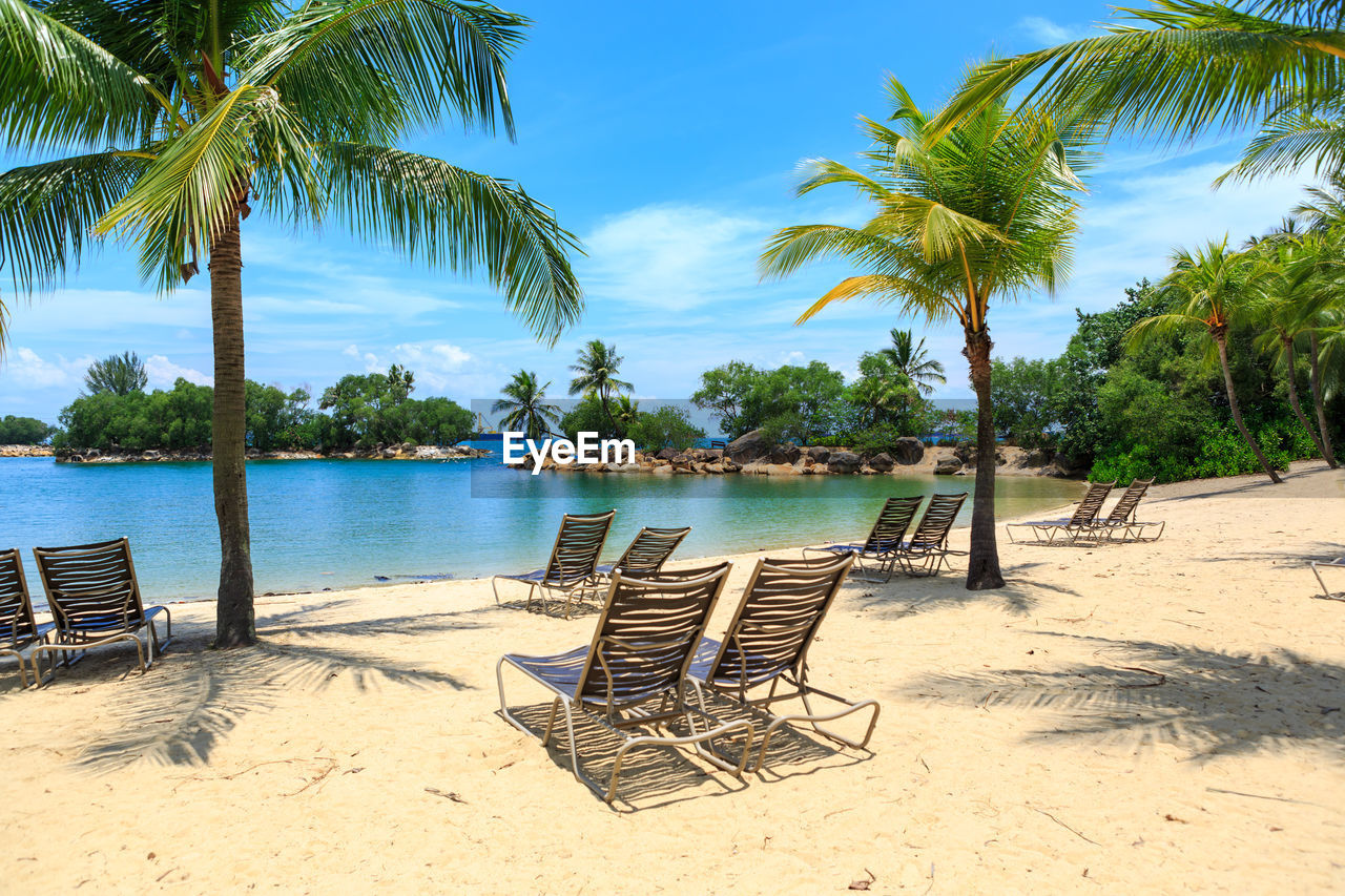 tropical climate, tree, palm tree, beach, sky, chair, water, land, sand, plant, lounge chair, nature, tranquil scene, tranquility, seat, beauty in nature, sea, scenics - nature, deck chair, no people, outdoors, coconut palm tree, outdoor chair, tropical tree