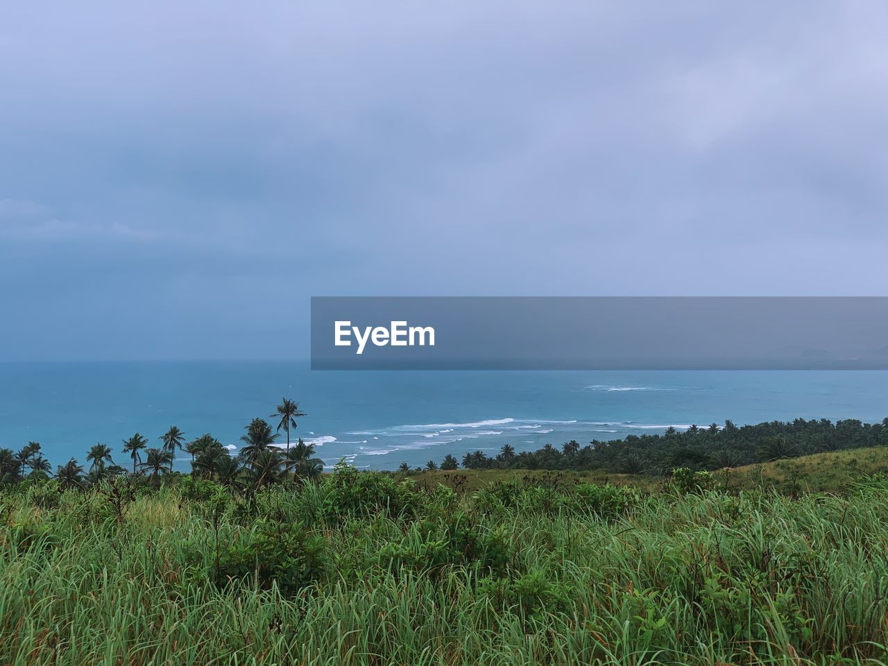 sky, scenics - nature, water, beauty in nature, sea, plant, land, grass, horizon, tranquil scene, tranquility, horizon over water, nature, no people, beach, growth, cloud - sky, environment, non-urban scene, outdoors, marram grass