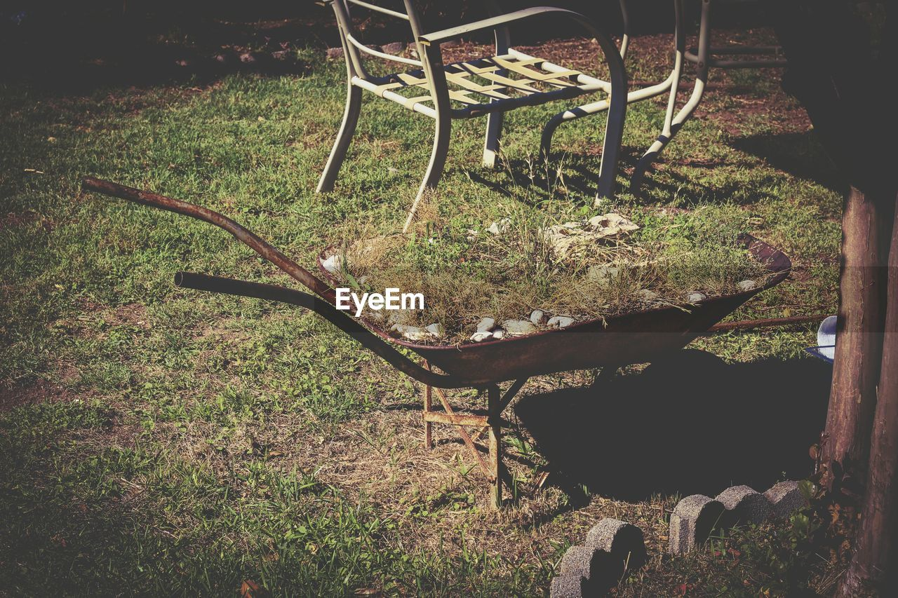 chair, grass, no people, furniture, seat, outdoors, day, nature