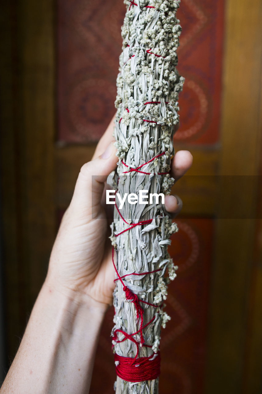 Cropped Image Of Hand Holding Tied Herb