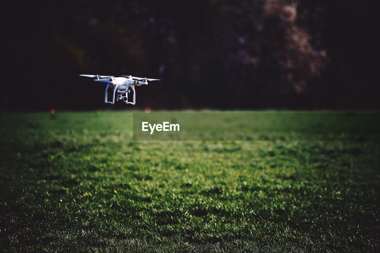 Close-up of drone in garden