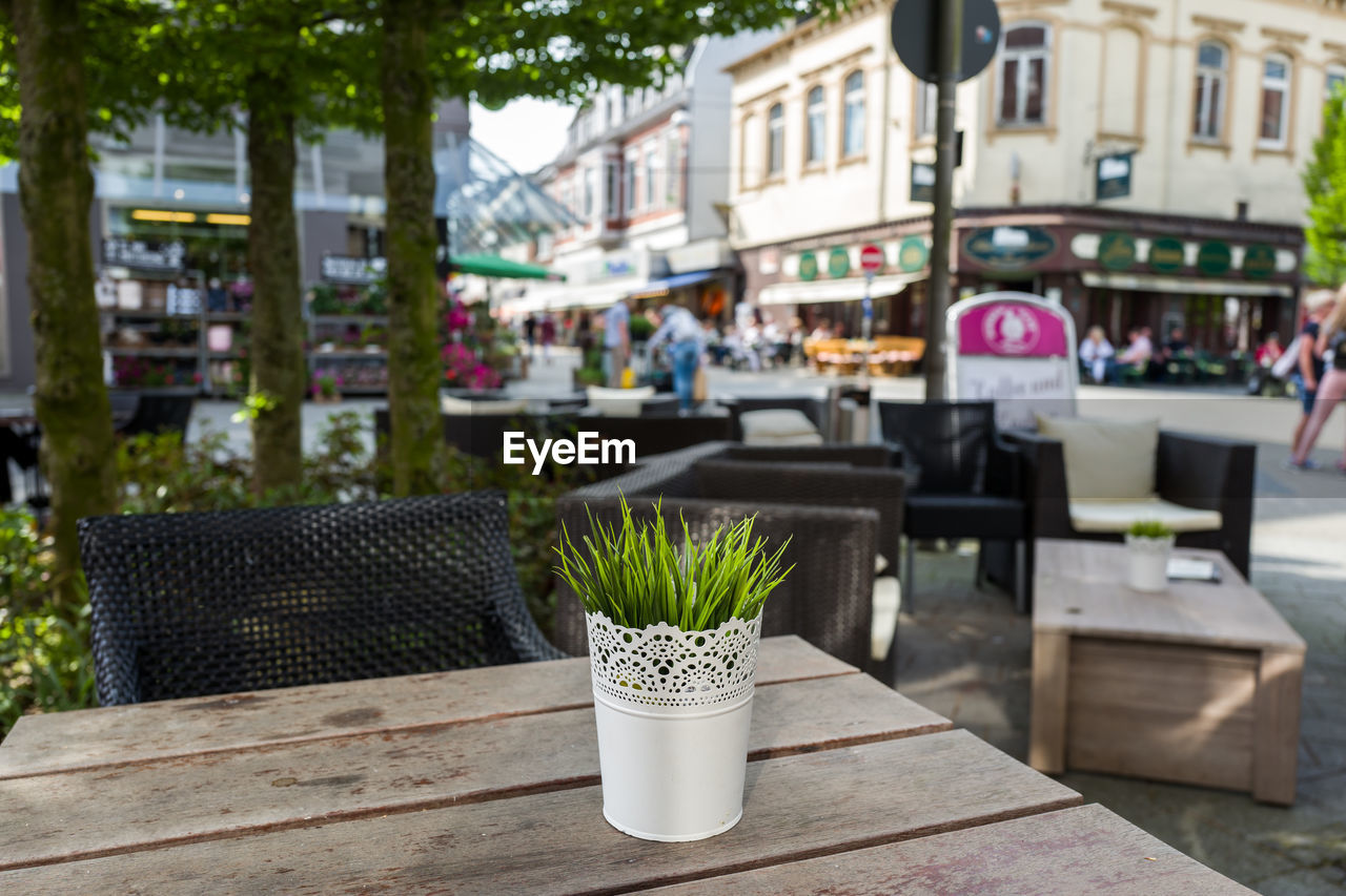 plant, table, potted plant, focus on foreground, architecture, growth, built structure, day, building exterior, nature, incidental people, cafe, wood - material, city, seat, green color, outdoors, business, restaurant, flower pot, houseplant
