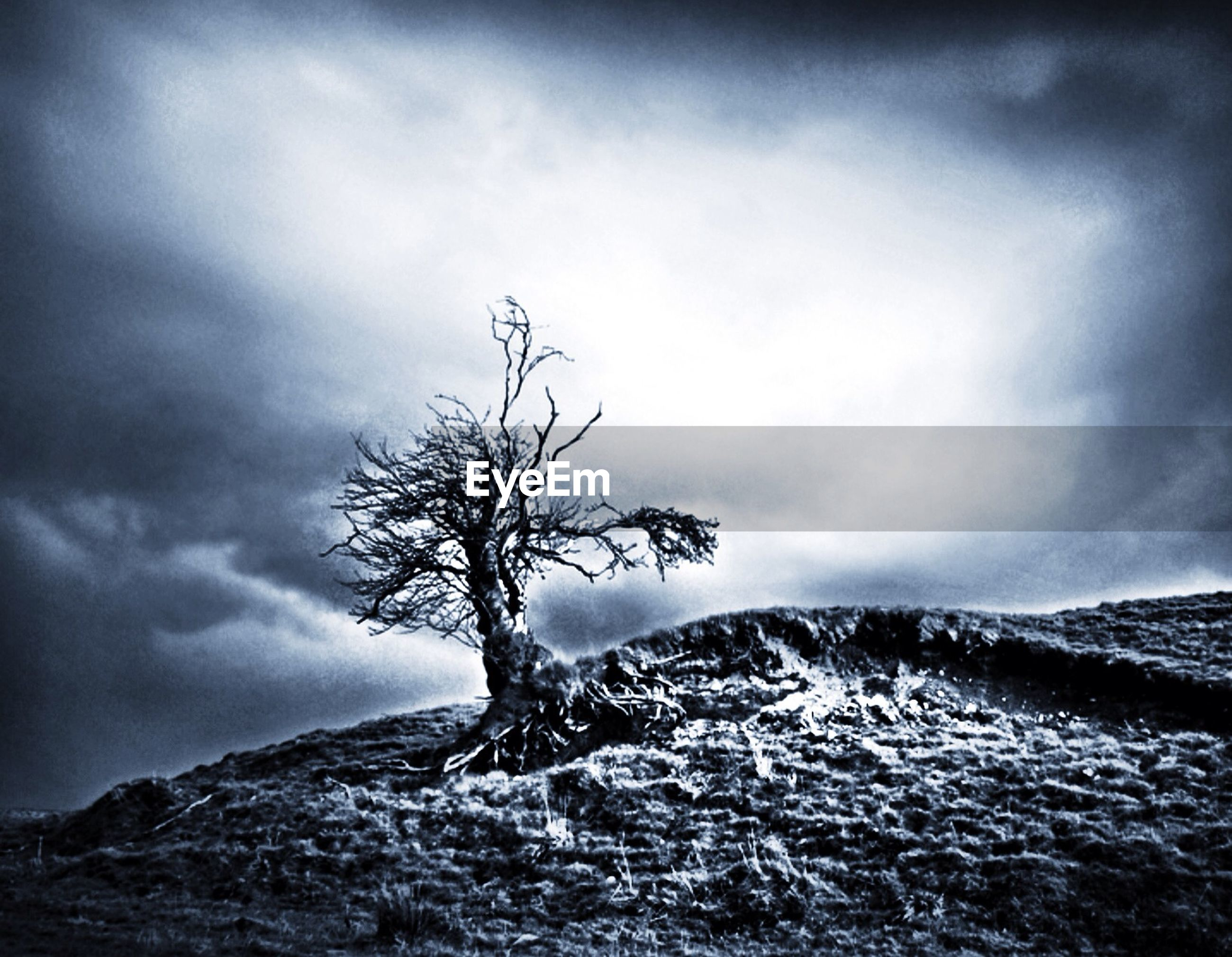 sky, tranquil scene, cloud - sky, tranquility, scenics, mountain, beauty in nature, nature, cloudy, water, bare tree, tree, cloud, weather, rock - object, non-urban scene, low angle view, day, branch, idyllic