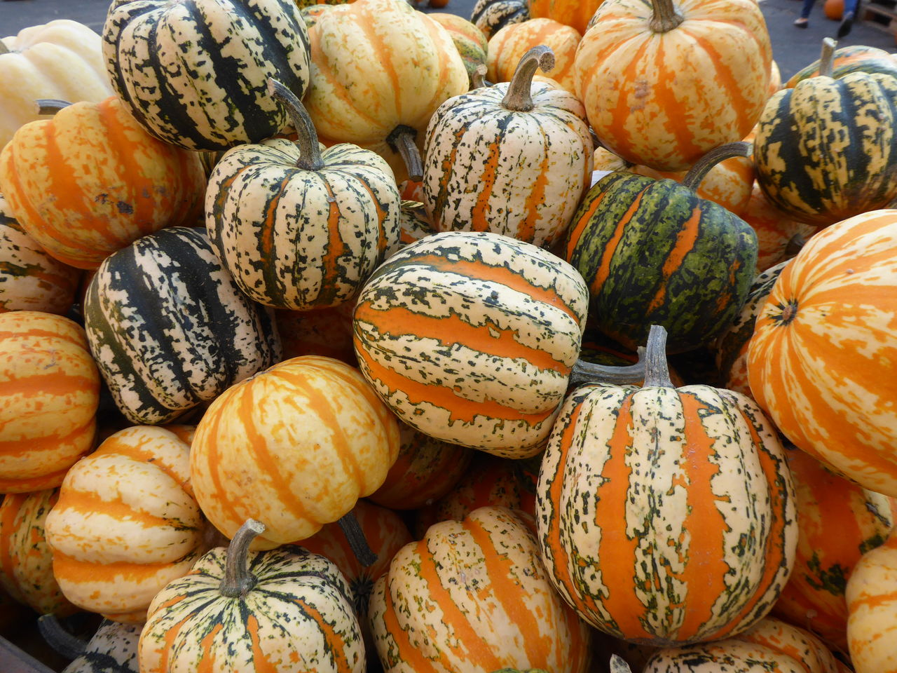 food and drink, food, full frame, pumpkin, freshness, backgrounds, healthy eating, no people, retail, for sale, large group of objects, wellbeing, market, close-up, vegetable, still life, day, abundance, halloween, orange color, gourd, outdoors, retail display