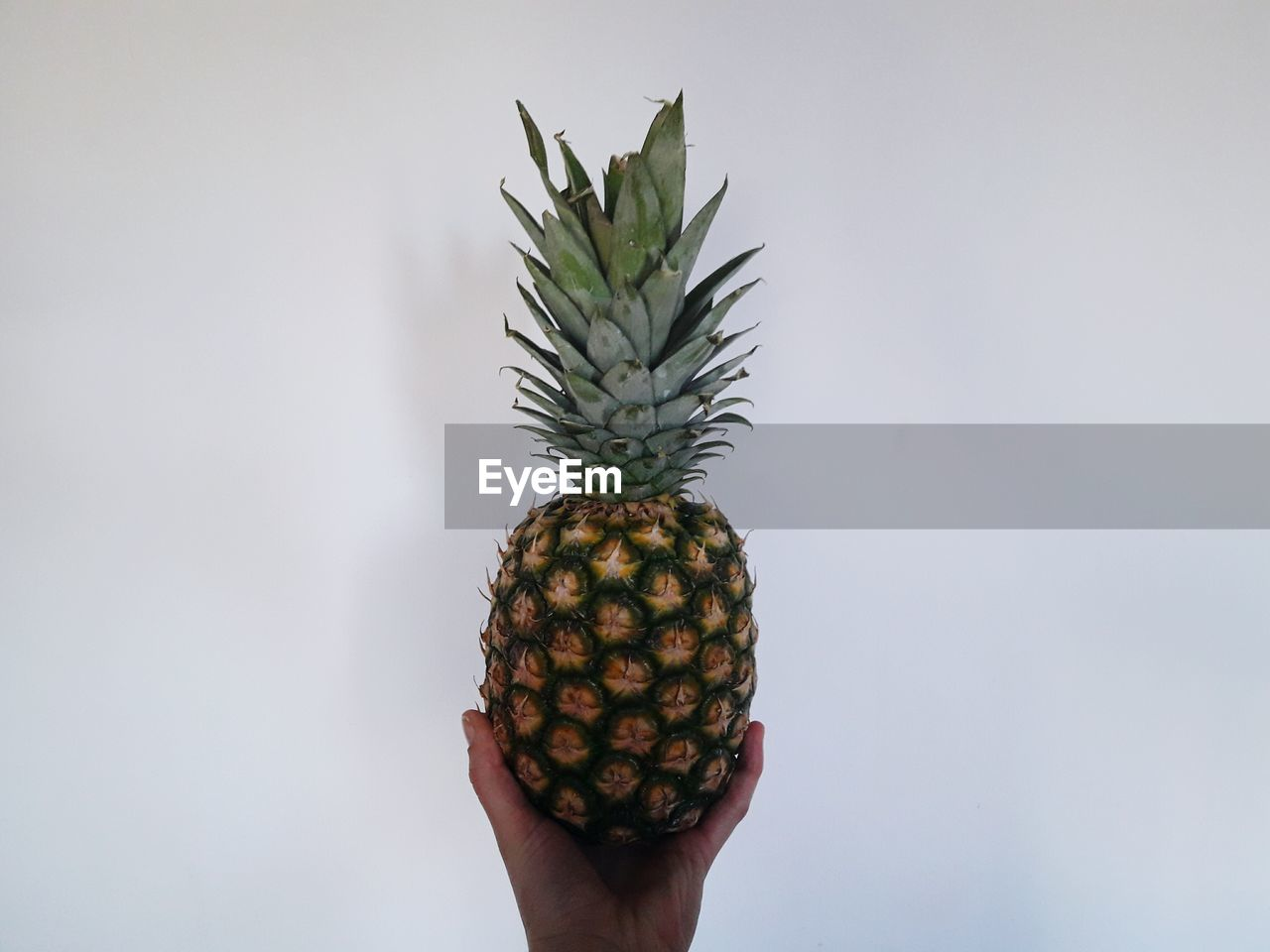 human hand, fruit, pineapple, human body part, holding, one person, food and drink, real people, food, freshness, healthy eating, personal perspective, studio shot, lifestyles, white background, close-up, day, outdoors, ready-to-eat, adult, people