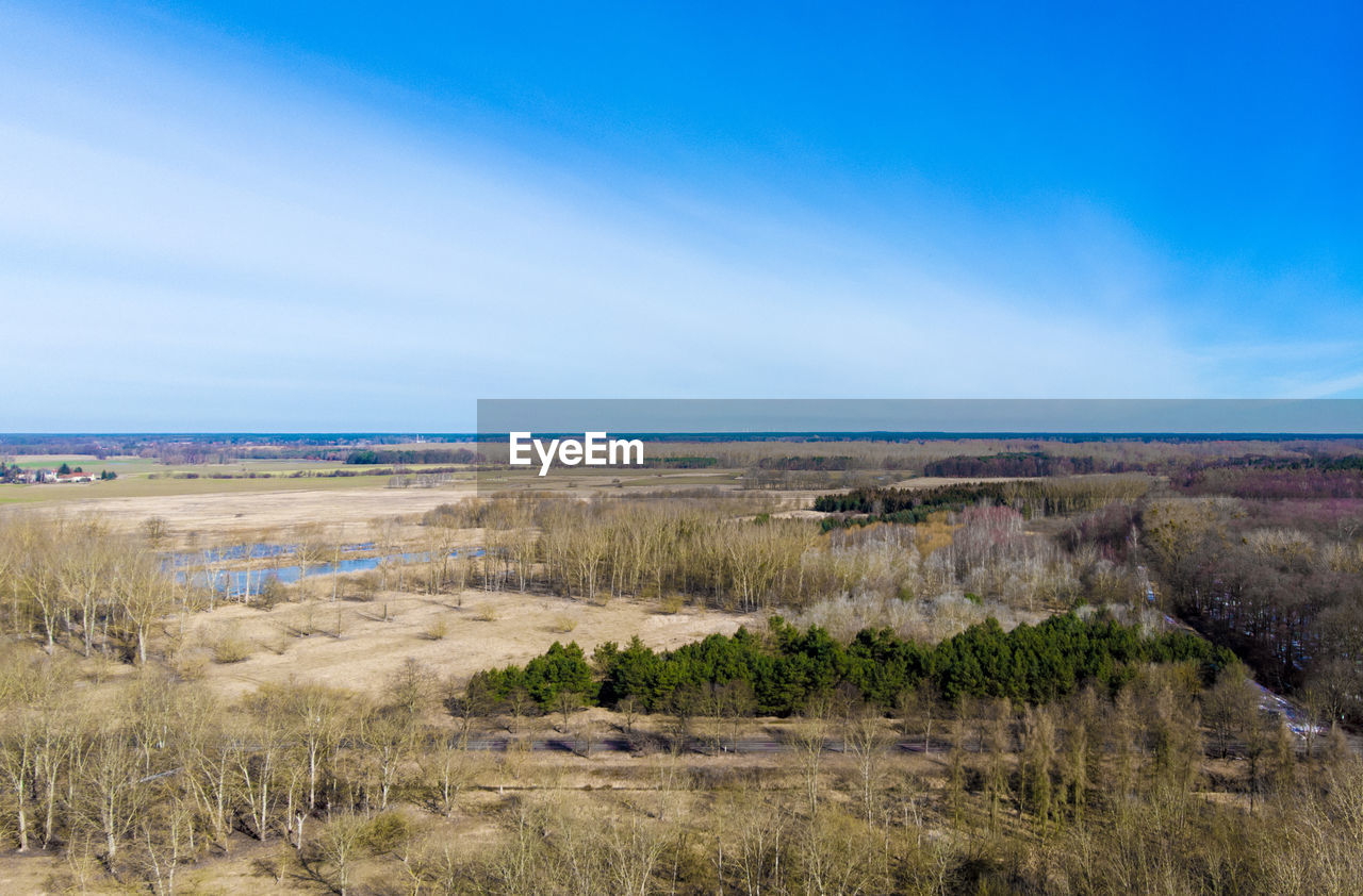 sky, scenics - nature, horizon, sea, environment, land, water, tranquil scene, landscape, plant, horizon over water, tranquility, grass, nature, day, no people, beauty in nature, non-urban scene, cloud - sky, outdoors, marram grass, semi-arid