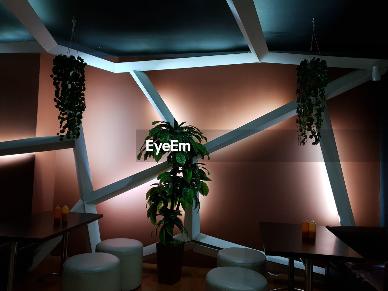 indoors, plant, no people, potted plant, home interior, nature, vase, growth, illuminated, architecture, seat, table, decoration, absence, domestic room, chair, houseplant, plant part, window, ceiling, electric lamp