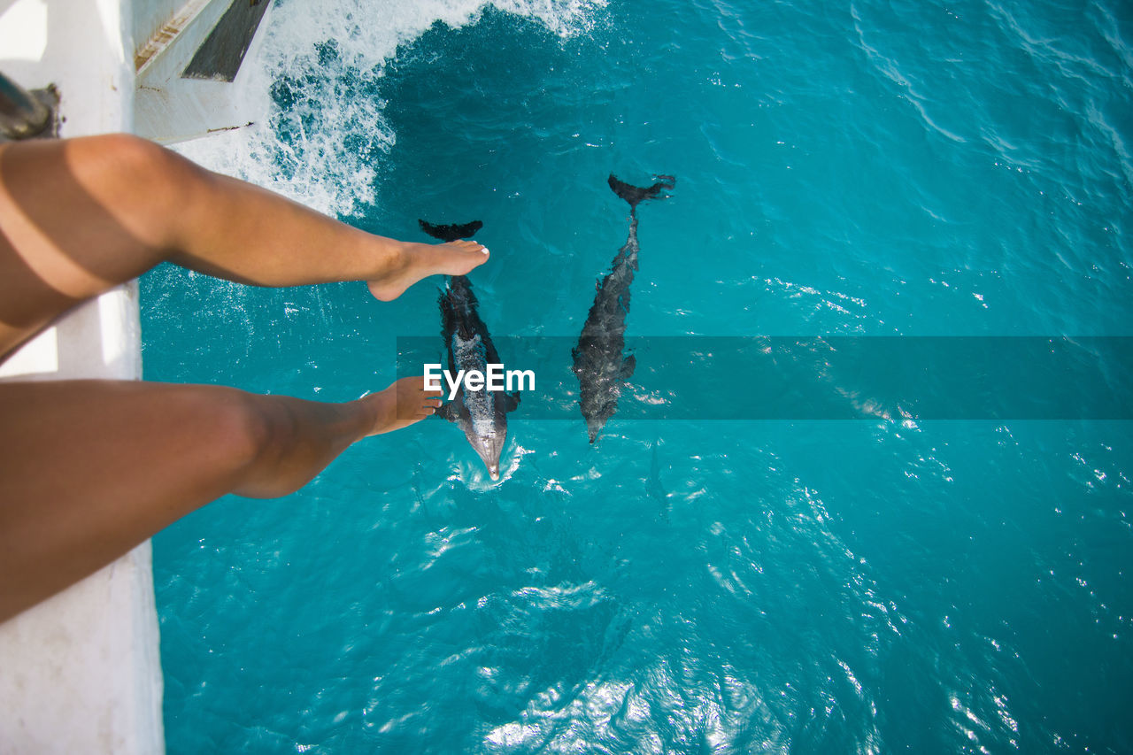 human body part, human hand, sea, water, real people, lifestyles, hand, leisure activity, underwater, nature, one person, high angle view, day, body part, outdoors, swimming, unrecognizable person, turquoise colored, marine, finger