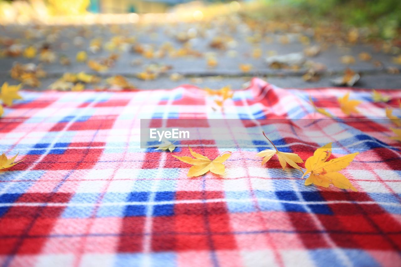 no people, leaf, close-up, selective focus, plant part, day, textile, change, pattern, autumn, nature, checked pattern, tablecloth, outdoors, still life, high angle view, blanket, red, multi colored, yellow, maple leaf, leaves