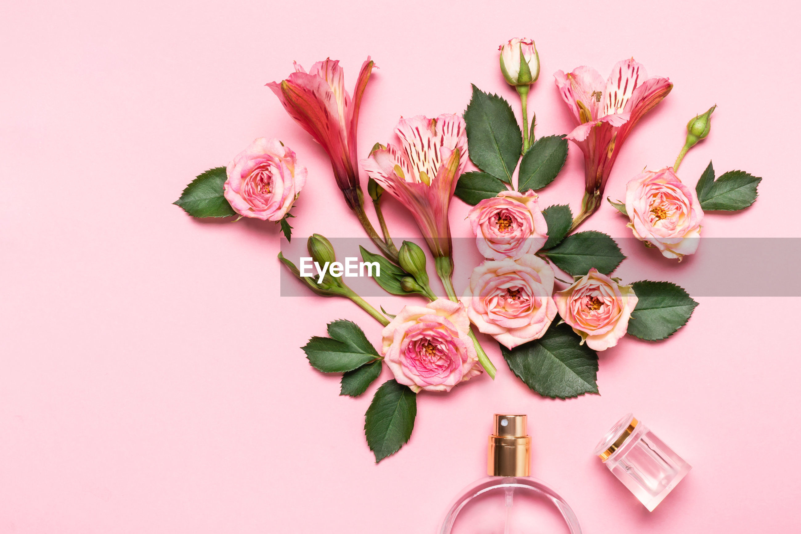 PINK FLOWER BOUQUET AGAINST WHITE WALL