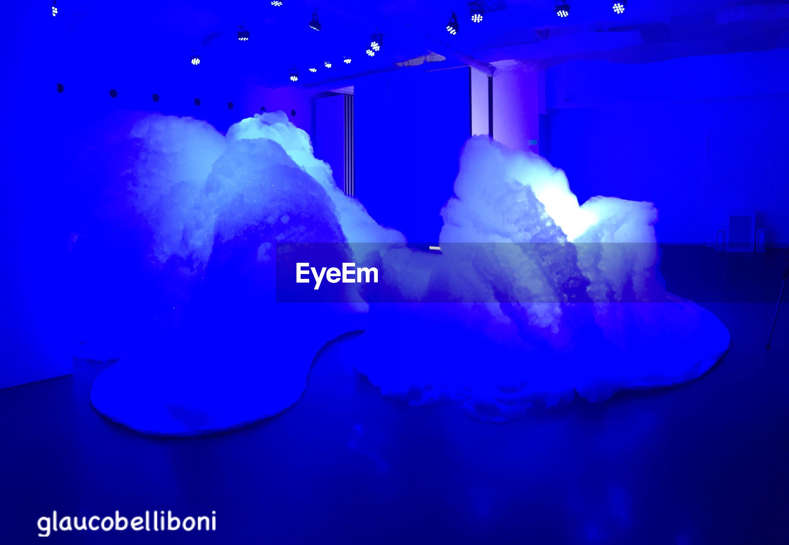 blue, underwater, jellyfish, sea life, water, aquarium, swimming, no people, undersea, indoors, close-up, nature, animal themes