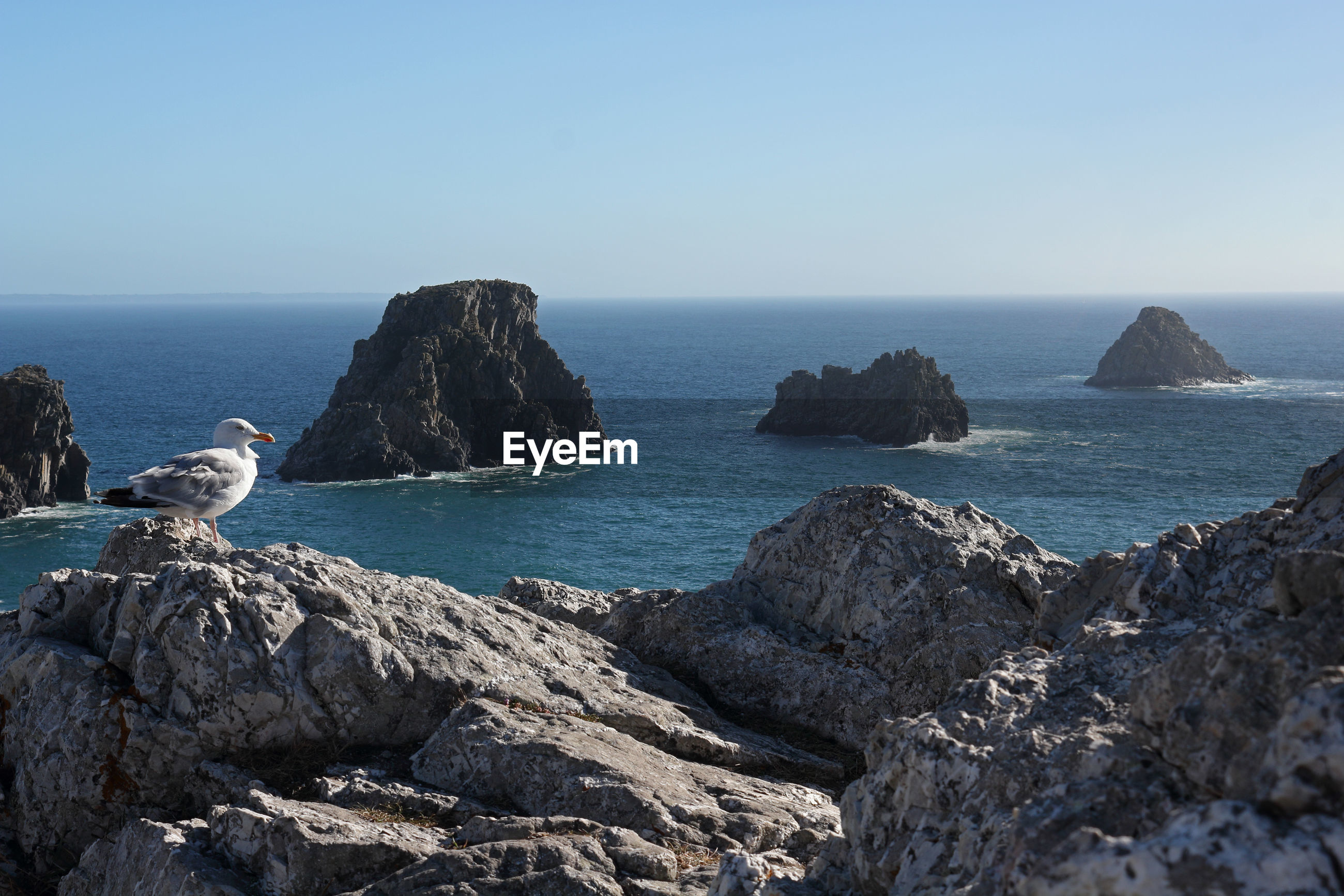 SCENIC VIEW OF SEA AND ROCK FORMATION AGAINST CLEAR SKY