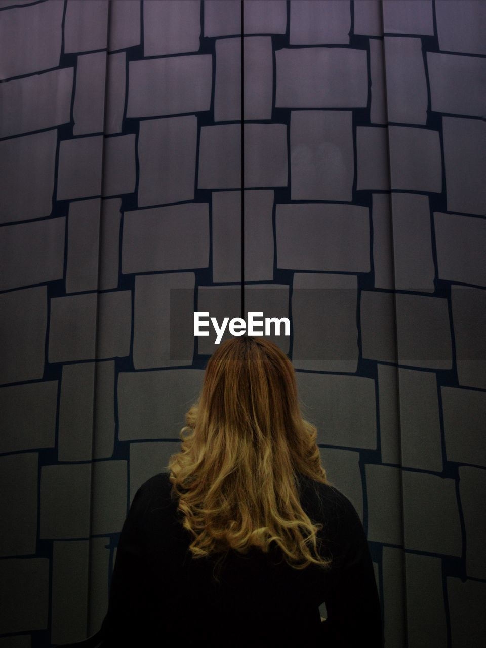 Rear View Of Woman Standing In Elevator At Art Museum