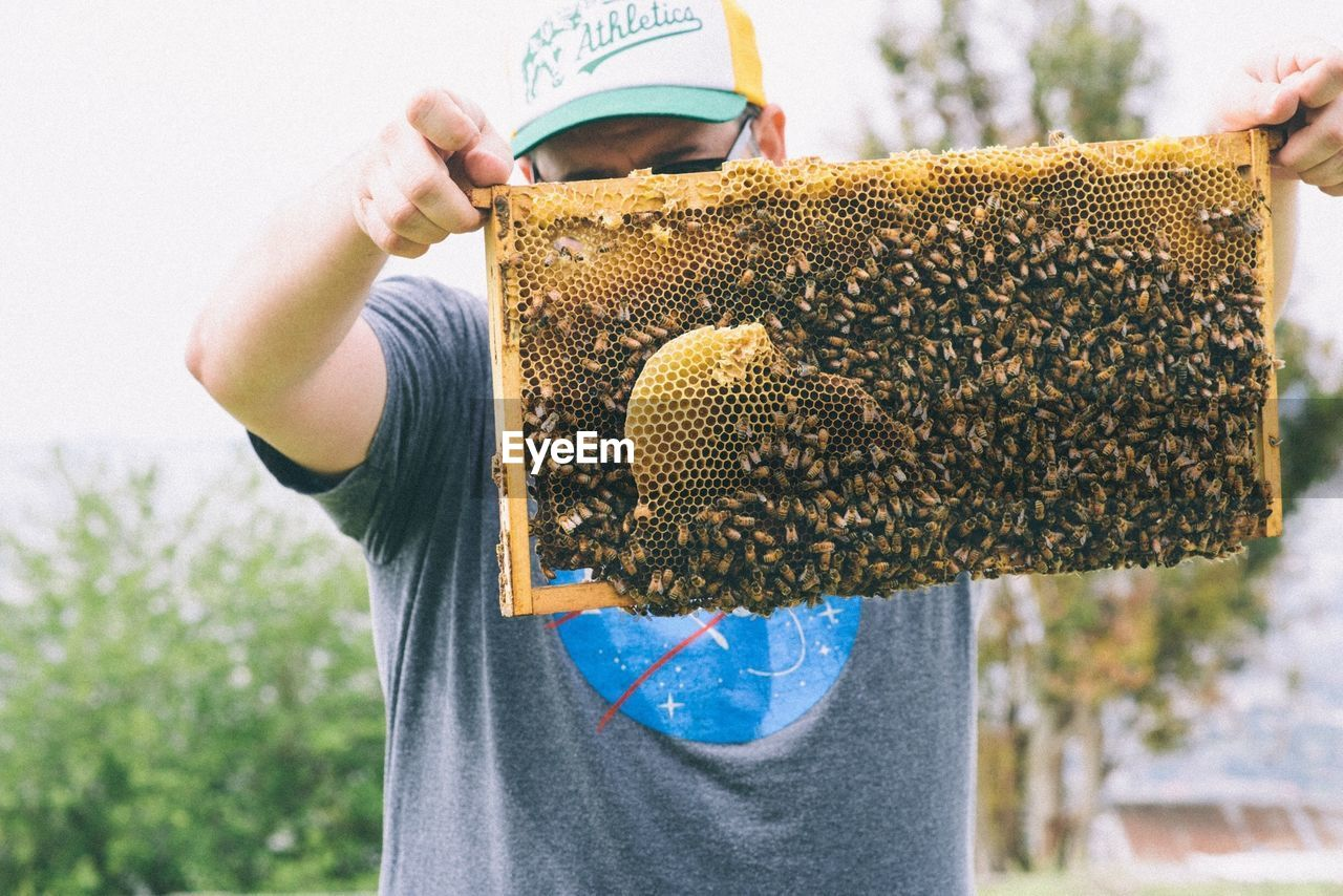 Beekeeper removing tray