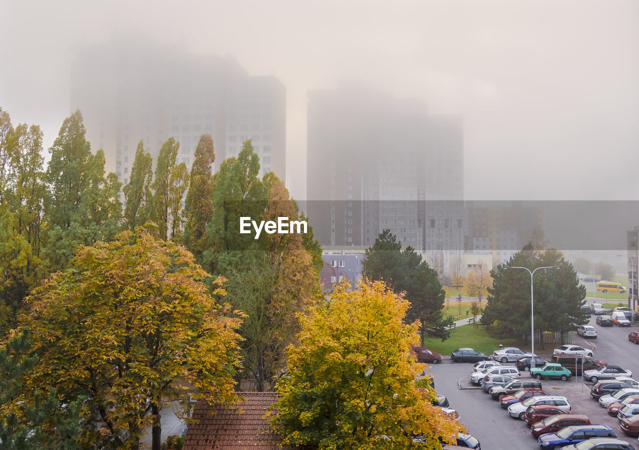 fog, tree, weather, architecture, autumn, outdoors, foggy, day, city, high angle view, change, skyscraper, building exterior, built structure, no people, car, growth, nature, leaf, water, cityscape, beauty in nature, sky
