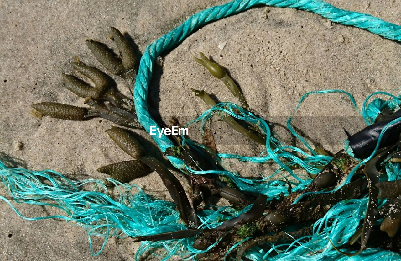 High angle view of rope and seaweed on beach