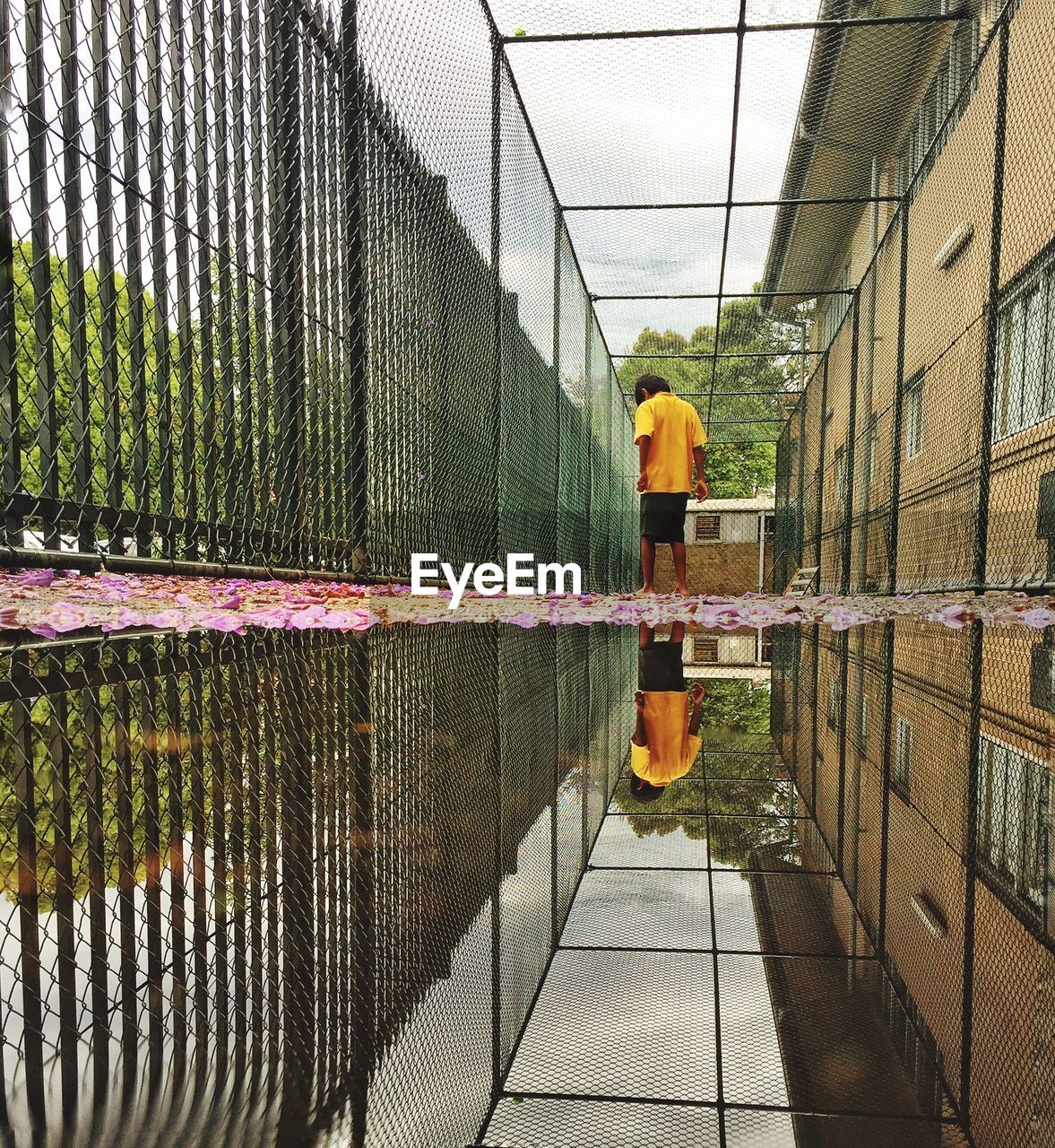Rear View Of Boy Reflecting On Puddle