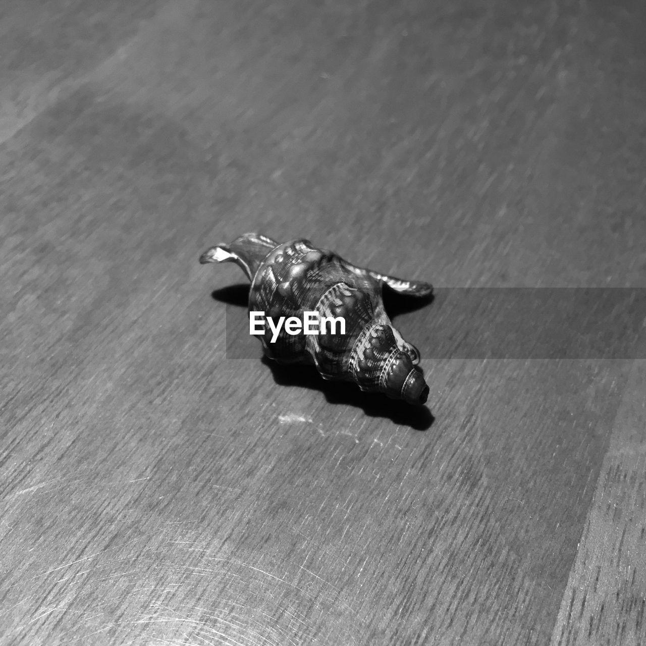 Seashell on wooden table