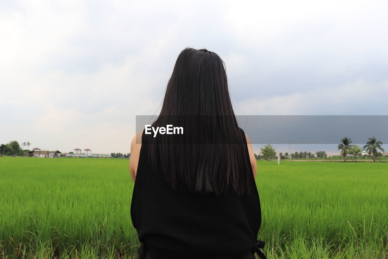 field, real people, rear view, land, plant, sky, standing, lifestyles, women, nature, leisure activity, adult, green color, one person, grass, environment, landscape, hair, hairstyle, cloud - sky, outdoors, looking at view