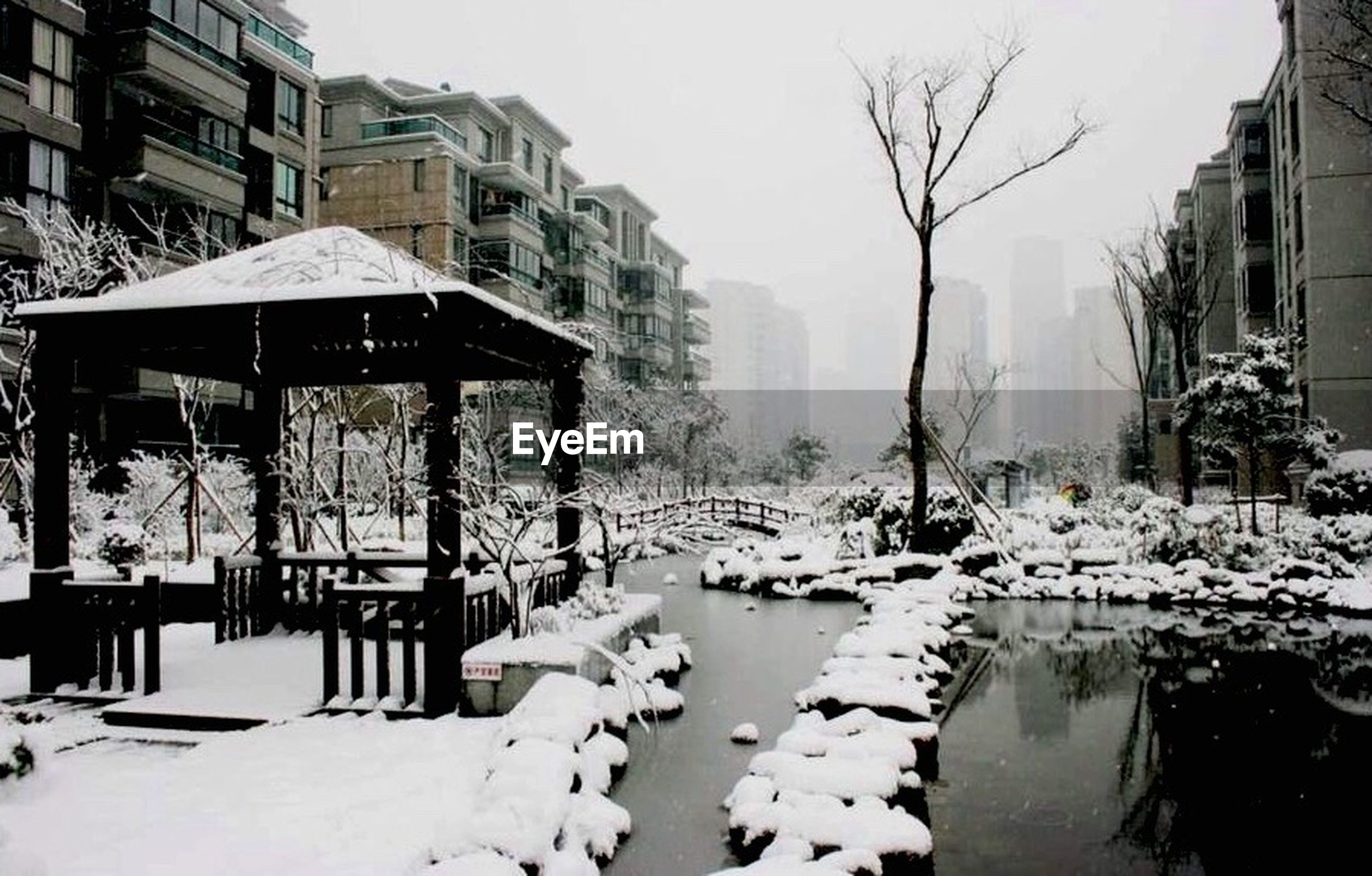 snow, winter, cold temperature, season, building exterior, weather, architecture, built structure, covering, frozen, bare tree, house, residential structure, residential building, tree, white color, city, covered, nature, street