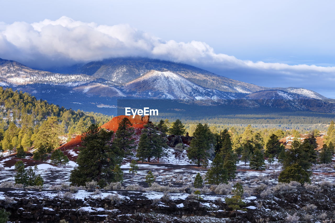 SCENIC VIEW OF TREES BY MOUNTAINS AGAINST SKY