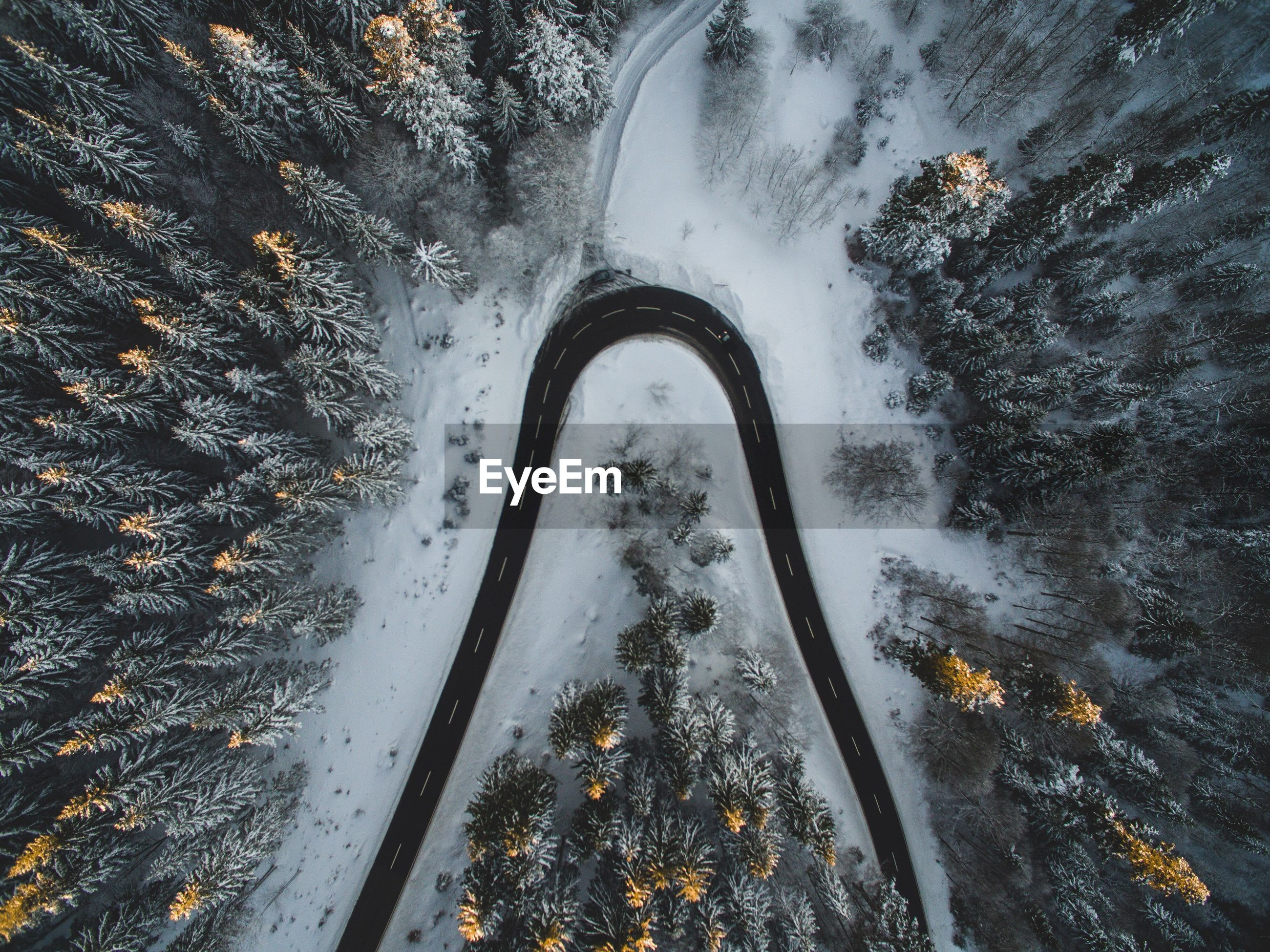 Aerial view of winding road through forest in winter