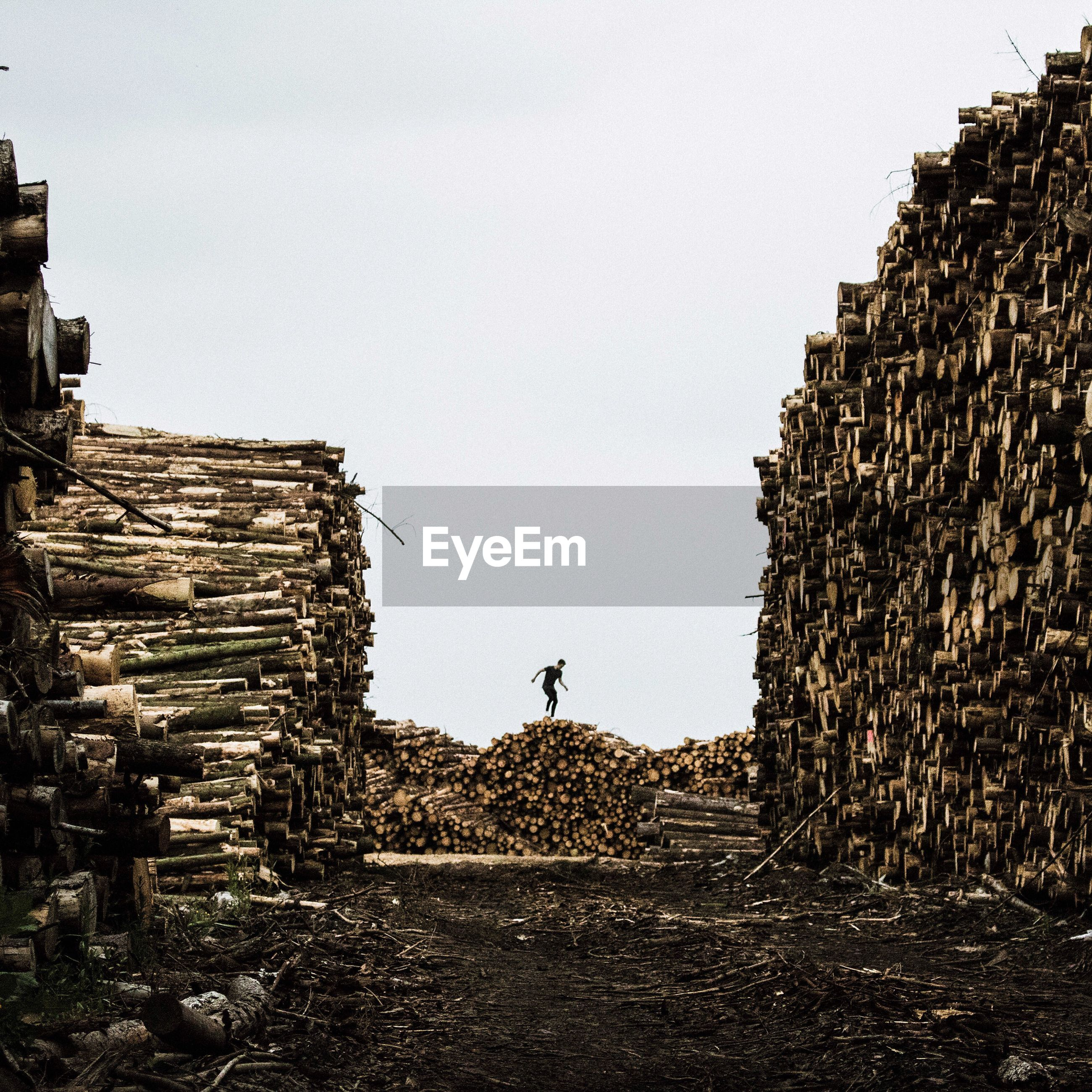 Man standing on logs on field against clear sky