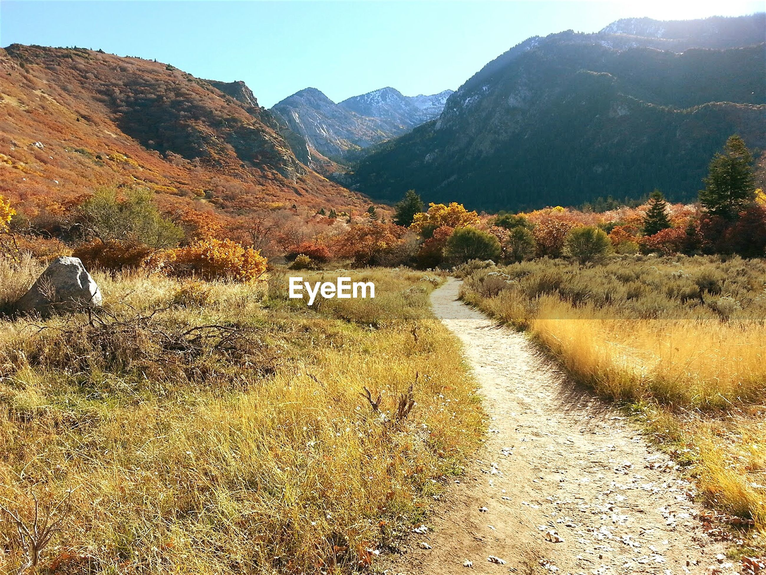 Pathway leading towards wasatch mountains