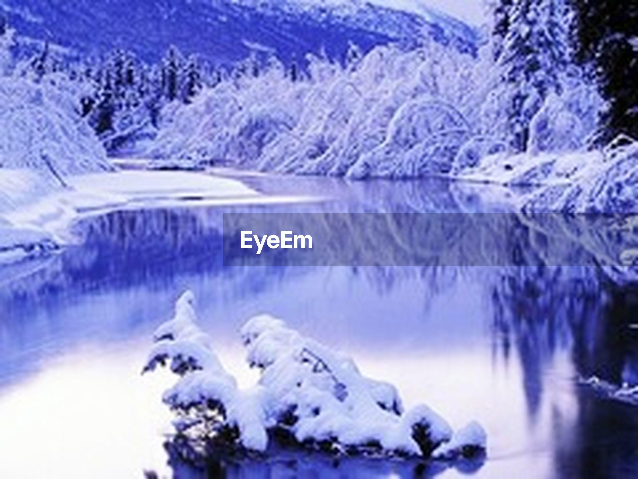 winter, snow, cold temperature, season, frozen, weather, beauty in nature, tranquil scene, tranquility, scenics, nature, covering, ice, tree, snowcapped mountain, blue, lake, white color, water, non-urban scene