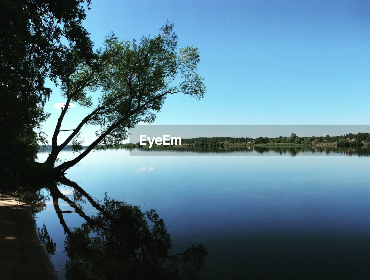 tree, water, nature, tranquil scene, lake, beauty in nature, scenics, reflection, tranquility, blue, outdoors, no people, day, sky, clear sky, forest, growth