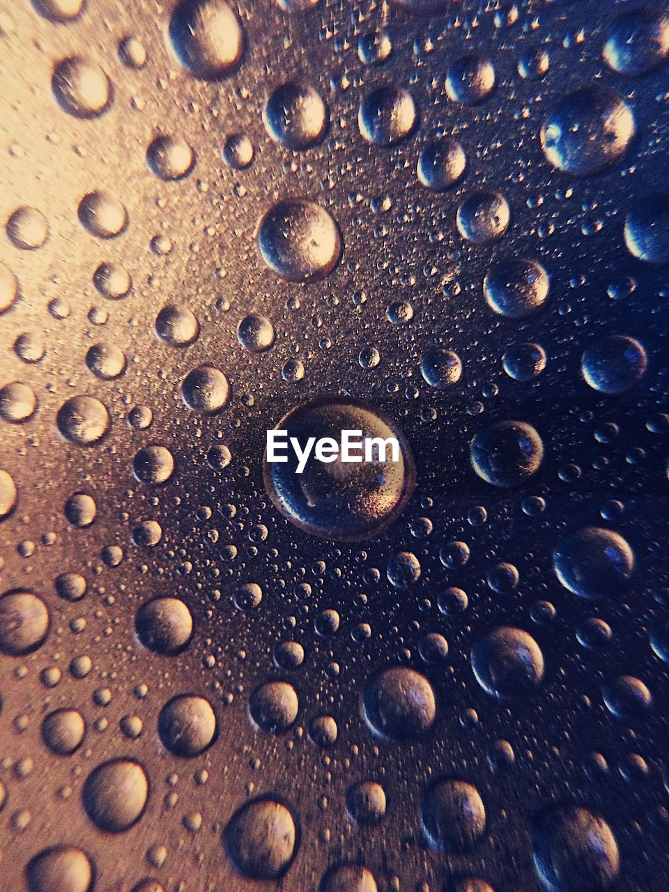 close-up, full frame, drop, water, backgrounds, no people, wet, nature, pattern, selective focus, bubble, brown, outdoors, textured, day, beauty in nature, transparent, sea, rain, purity, marine, raindrop