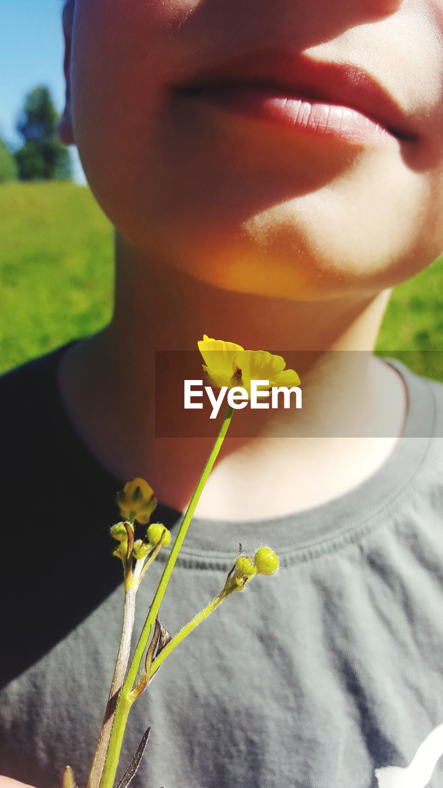Midsection of boy with yellow flowers
