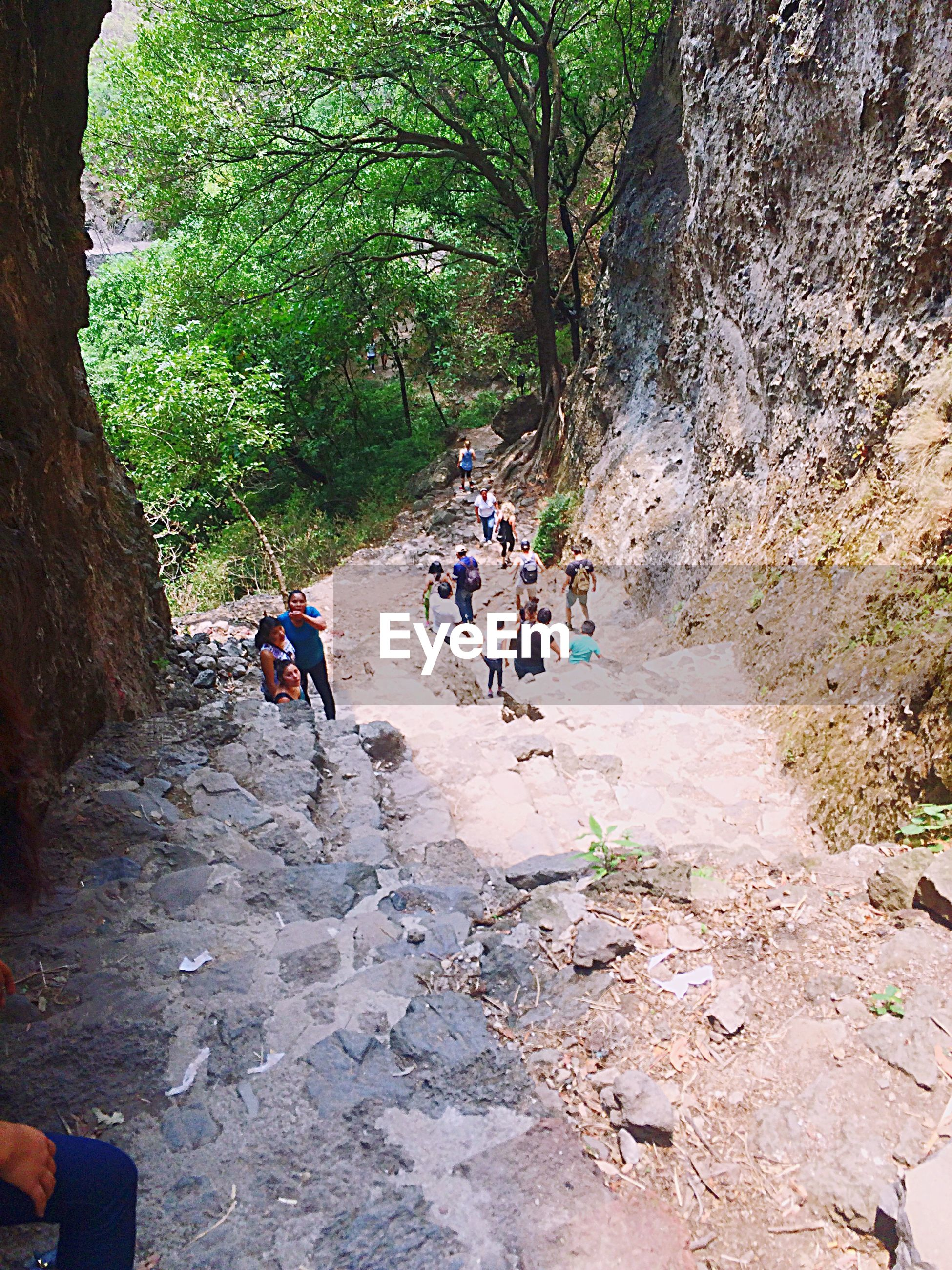men, lifestyles, leisure activity, person, tree, rock - object, walking, medium group of people, togetherness, nature, sunlight, tourist, vacations, travel, full length