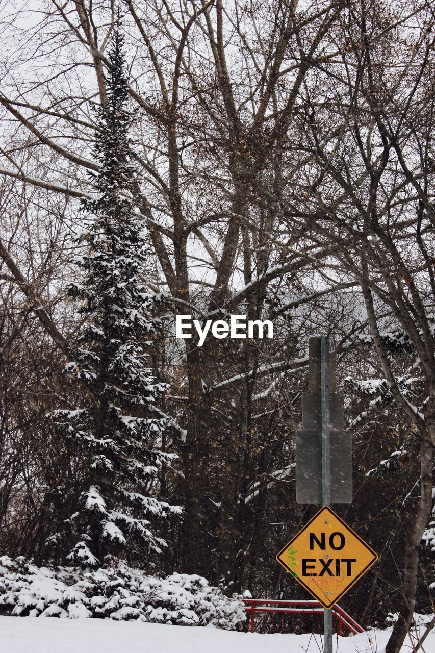 communication, winter, cold temperature, text, snow, tree, road sign, day, outdoors, no people, nature, sky