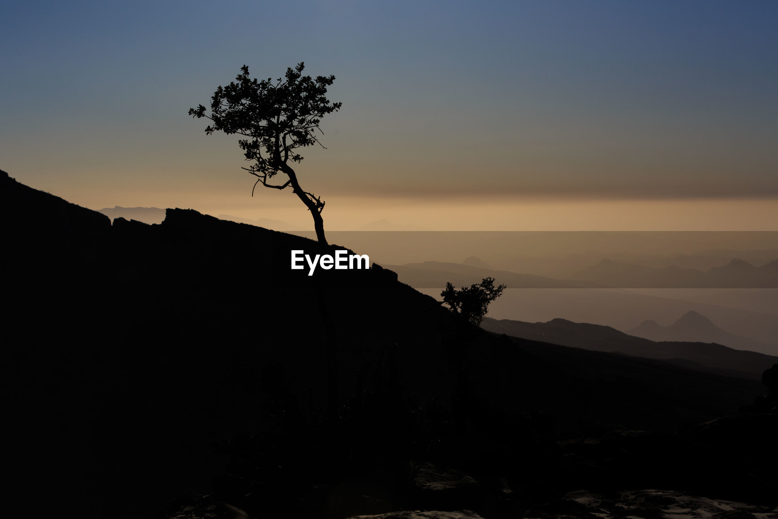 SILHOUETTE TREE ON MOUNTAIN AGAINST SKY
