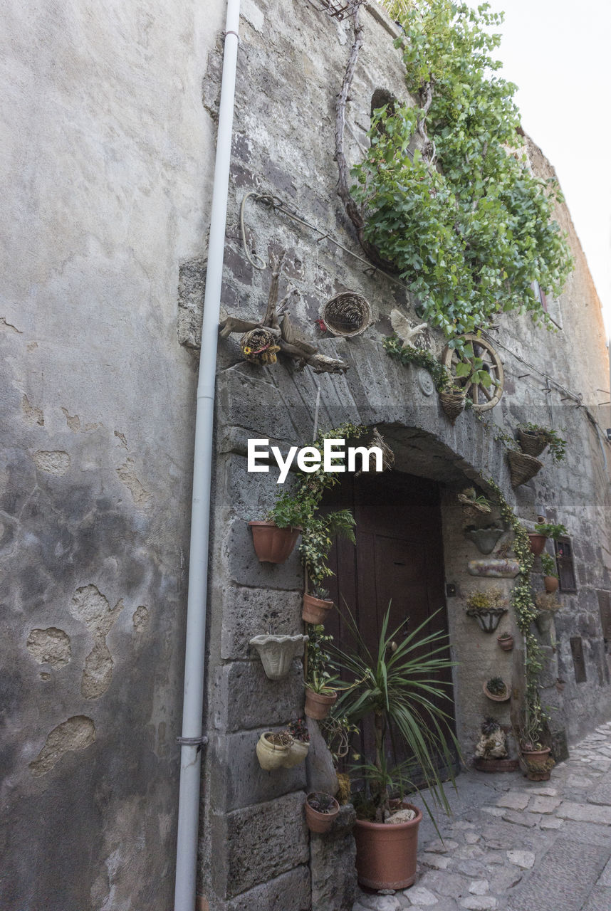 architecture, built structure, growth, plant, building exterior, potted plant, building, wall, nature, wall - building feature, no people, house, outdoors, green color, day, leaf, plant part, residential district, solid, staircase, stone wall, flower pot
