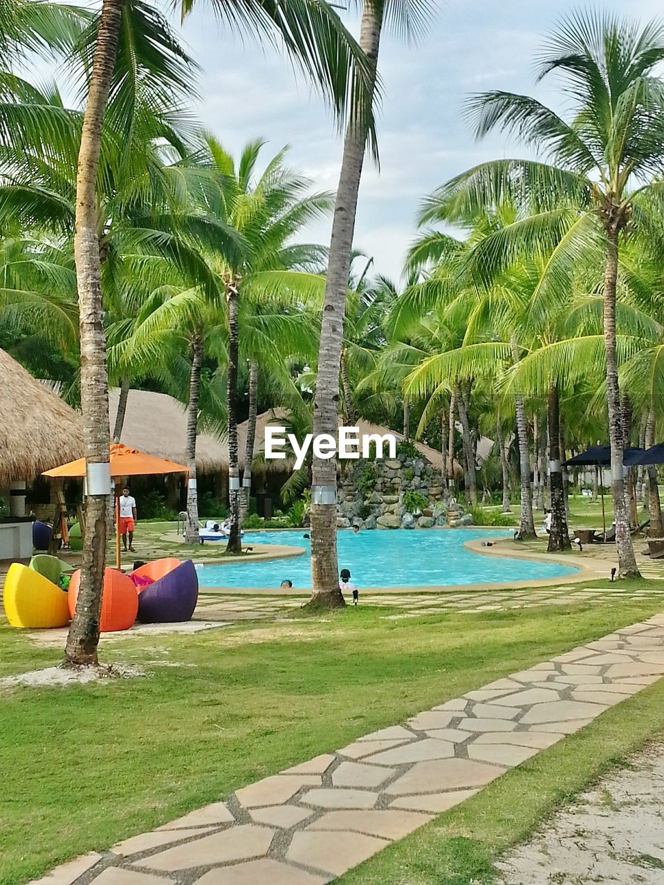 palm tree, tree, swimming pool, water, tree trunk, tourist resort, day, tranquility, growth, beach, sea, outdoors, no people, tranquil scene, sky, beauty in nature, nature, scenics, vacations