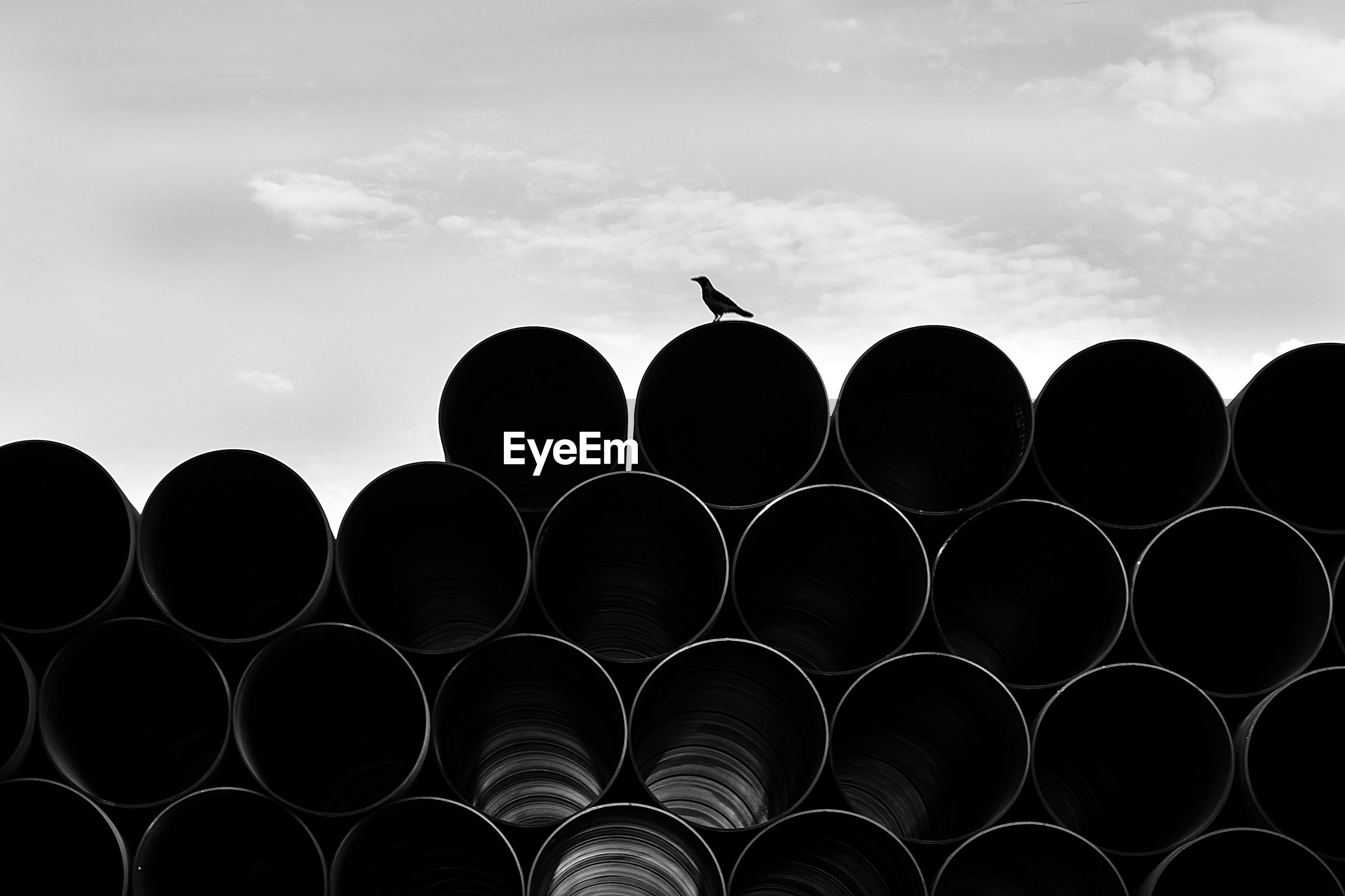 Low angle view of silhouette birds on pipe against cloudy sky